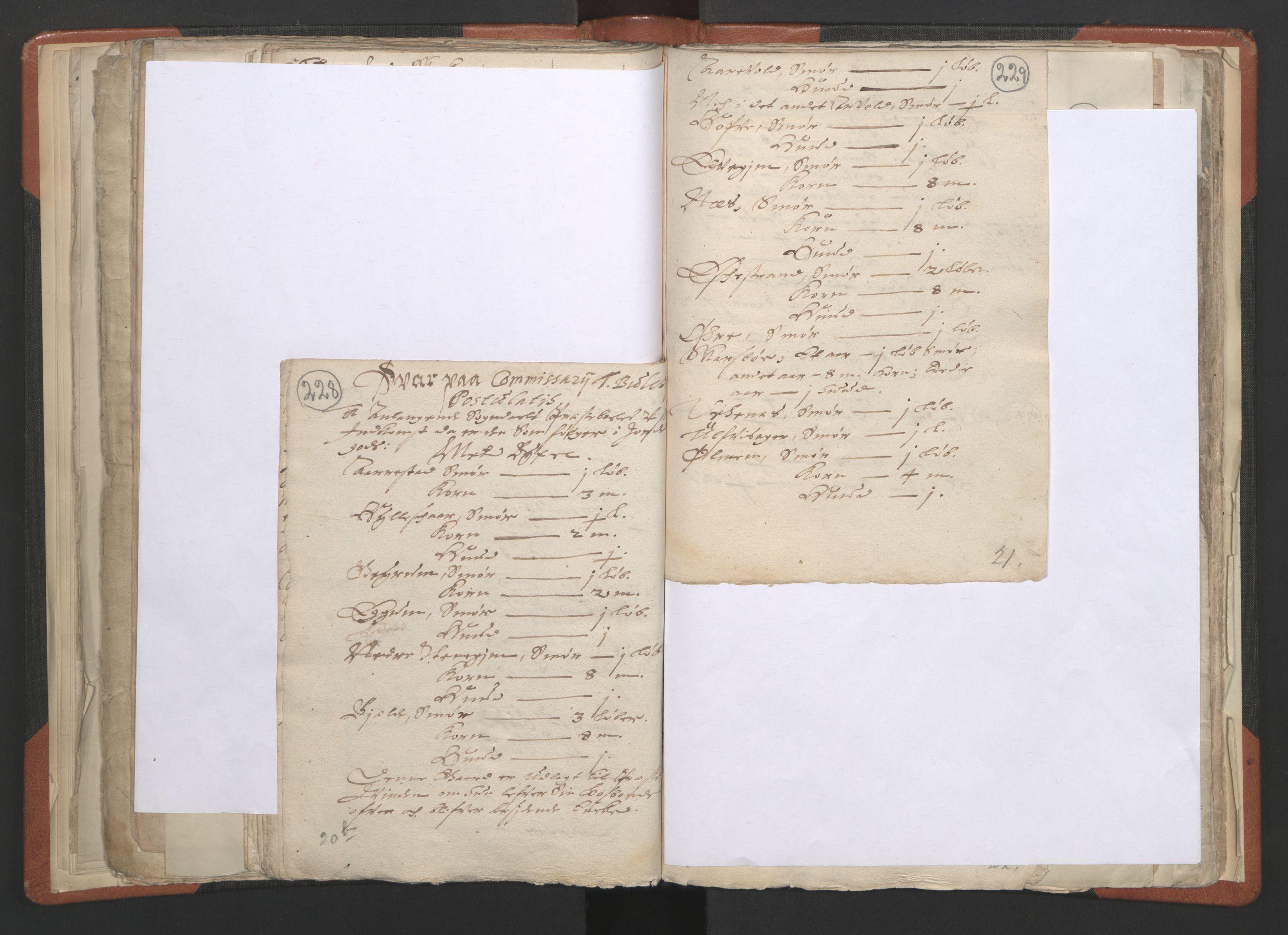 RA, Sogneprestenes manntall 1664-1666, nr. 23: Sogn prosti, 1664-1666, s. 228-229