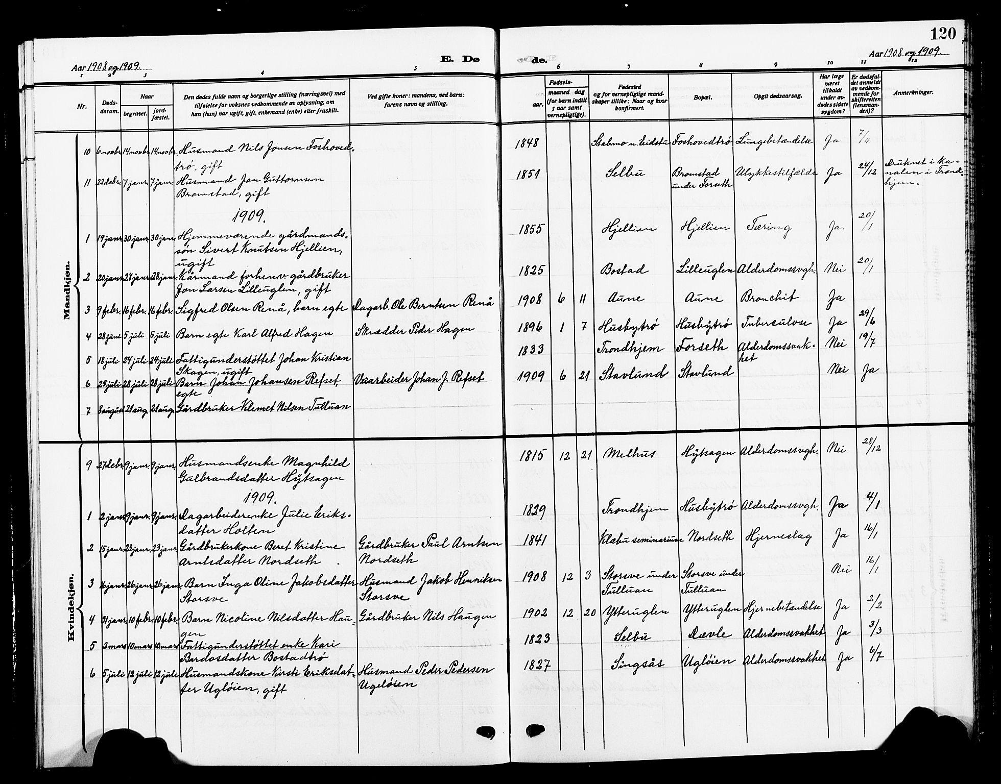 SAT, Ministerialprotokoller, klokkerbøker og fødselsregistre - Sør-Trøndelag, 618/L0453: Klokkerbok nr. 618C04, 1907-1925, s. 120