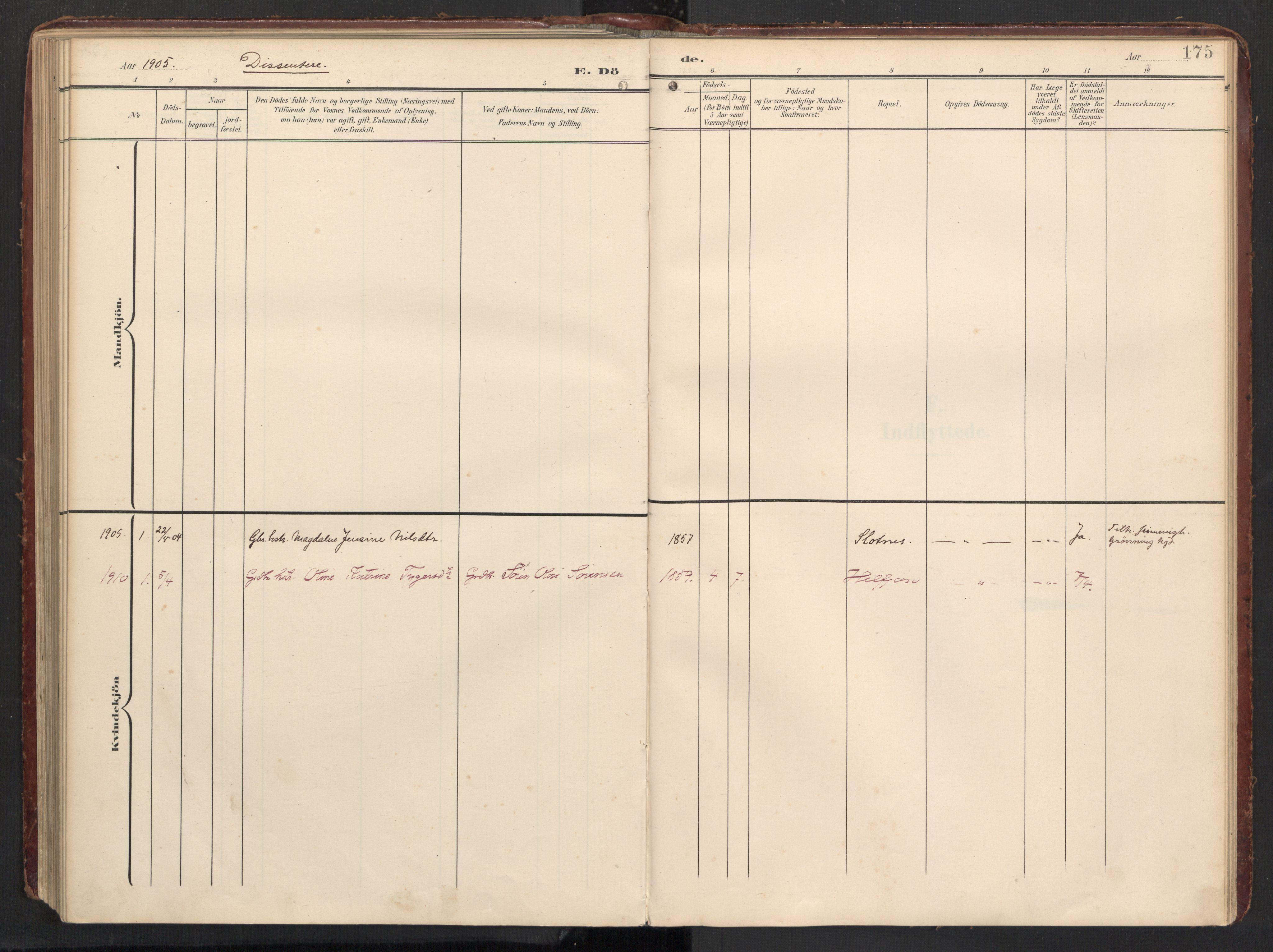 SAT, Ministerialprotokoller, klokkerbøker og fødselsregistre - Nordland, 890/L1287: Ministerialbok nr. 890A02, 1903-1915, s. 175