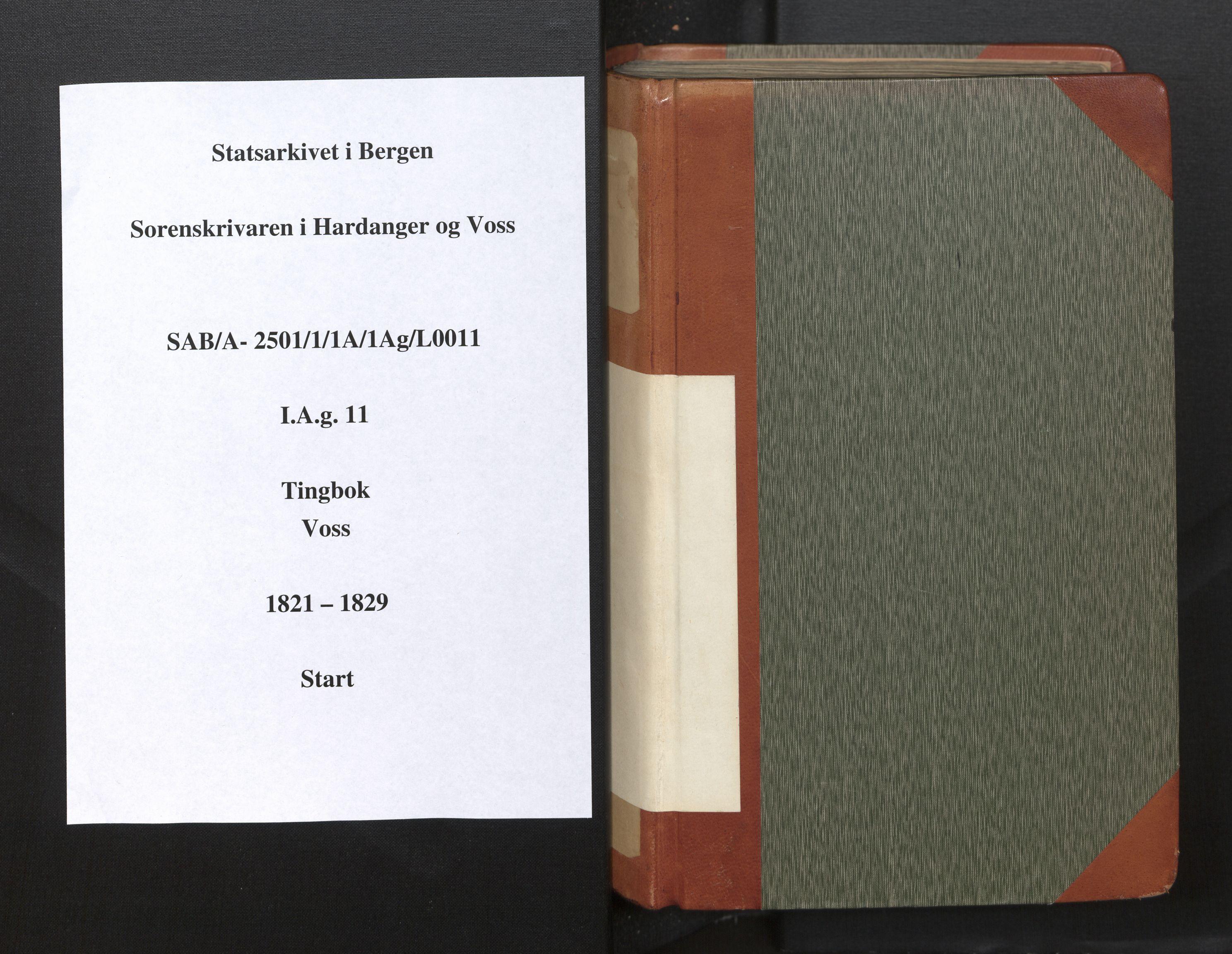 SAB, Hardanger og Voss Sorenskriveri, 1/1A/1Ag/L0011: Tingbok for Voss, 1821-1829