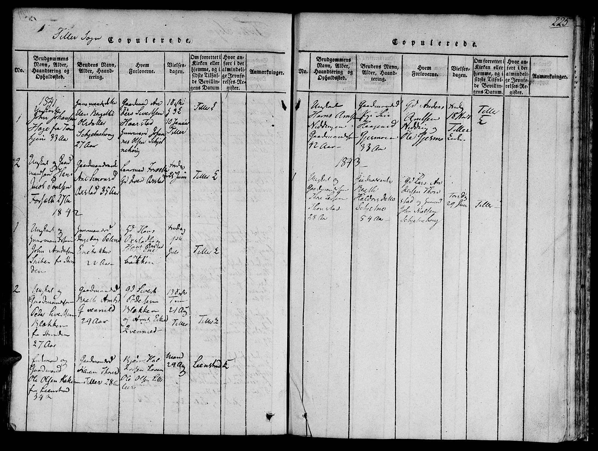 SAT, Ministerialprotokoller, klokkerbøker og fødselsregistre - Sør-Trøndelag, 618/L0440: Ministerialbok nr. 618A04 /2, 1816-1843, s. 225