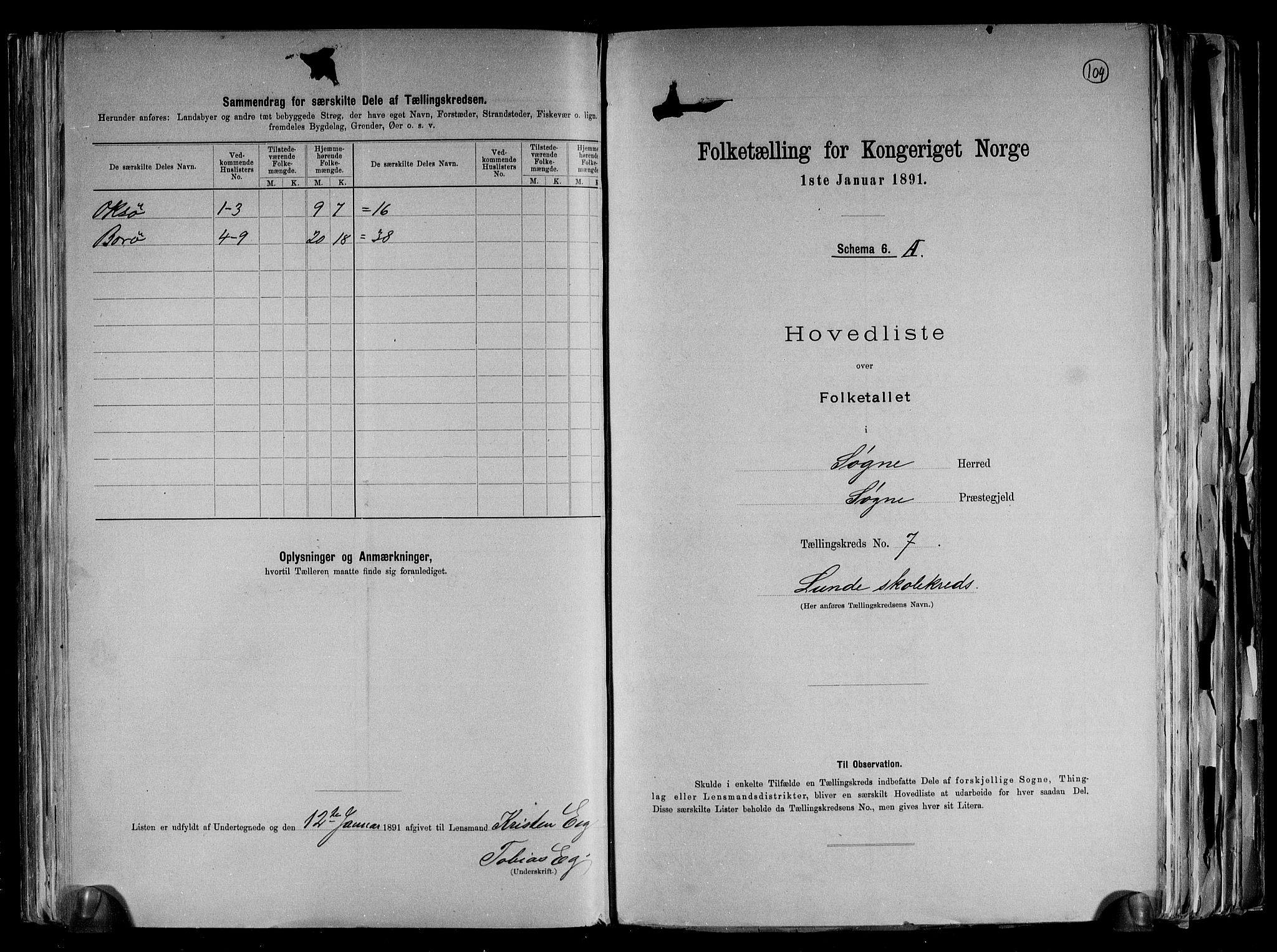 RA, Folketelling 1891 for 1018 Søgne herred, 1891, s. 19