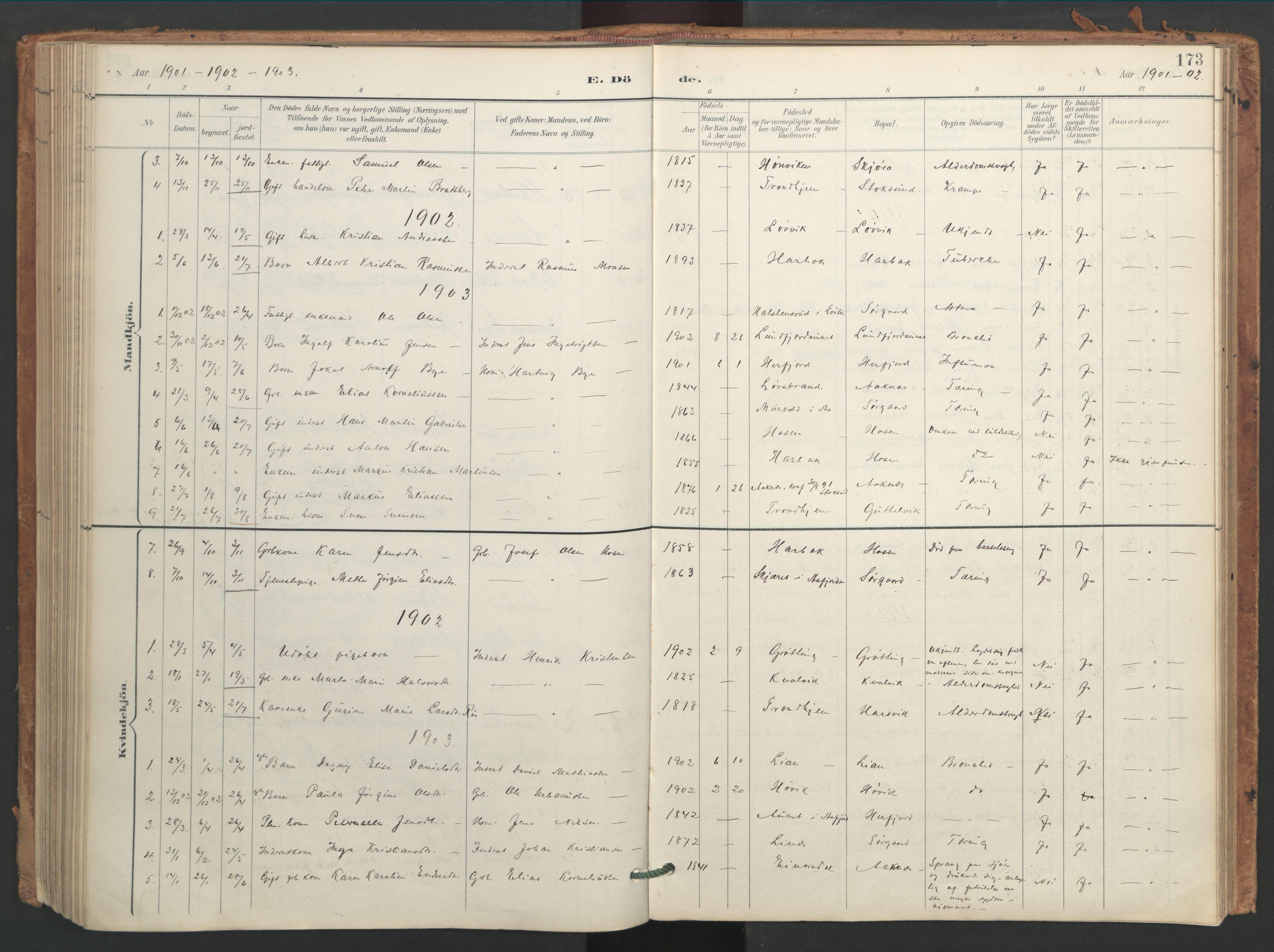 SAT, Ministerialprotokoller, klokkerbøker og fødselsregistre - Sør-Trøndelag, 656/L0693: Ministerialbok nr. 656A02, 1894-1913, s. 173