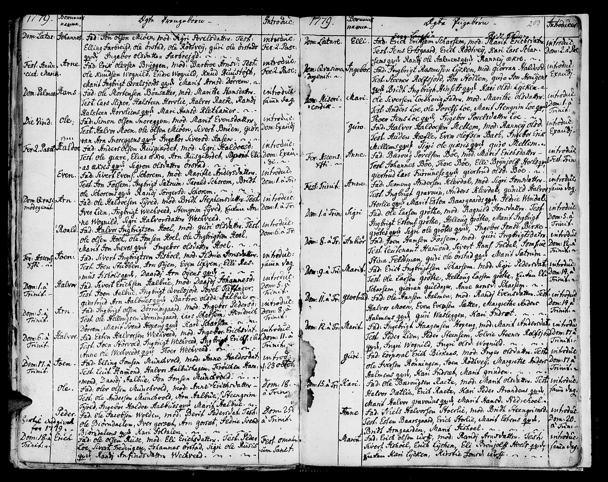 SAT, Ministerialprotokoller, klokkerbøker og fødselsregistre - Sør-Trøndelag, 678/L0891: Ministerialbok nr. 678A01, 1739-1780, s. 203