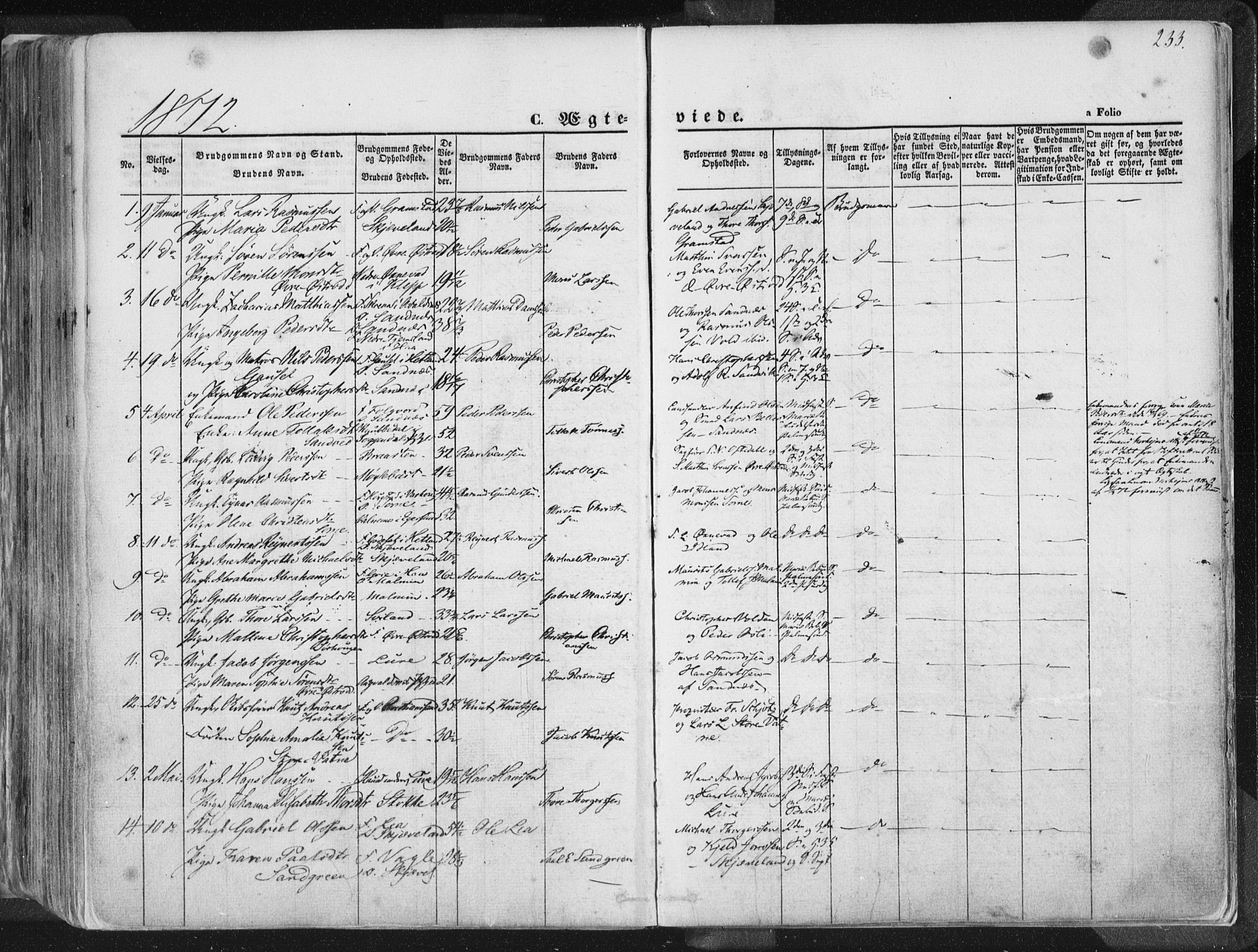 SAST, Høyland sokneprestkontor, 30BA/L0010: Ministerialbok nr. A 9.1, 1857-1877, s. 233
