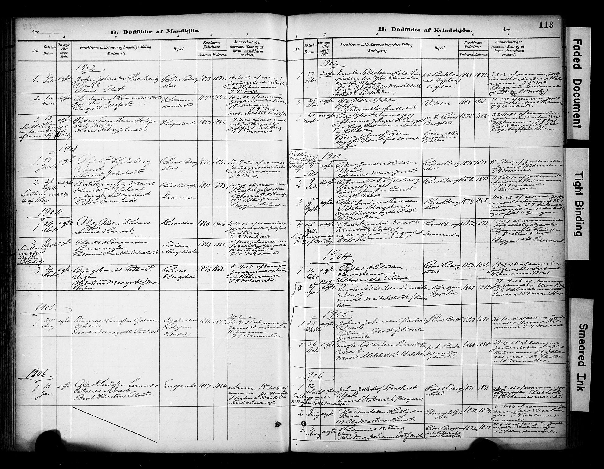 SAT, Ministerialprotokoller, klokkerbøker og fødselsregistre - Sør-Trøndelag, 681/L0936: Ministerialbok nr. 681A14, 1899-1908, s. 113