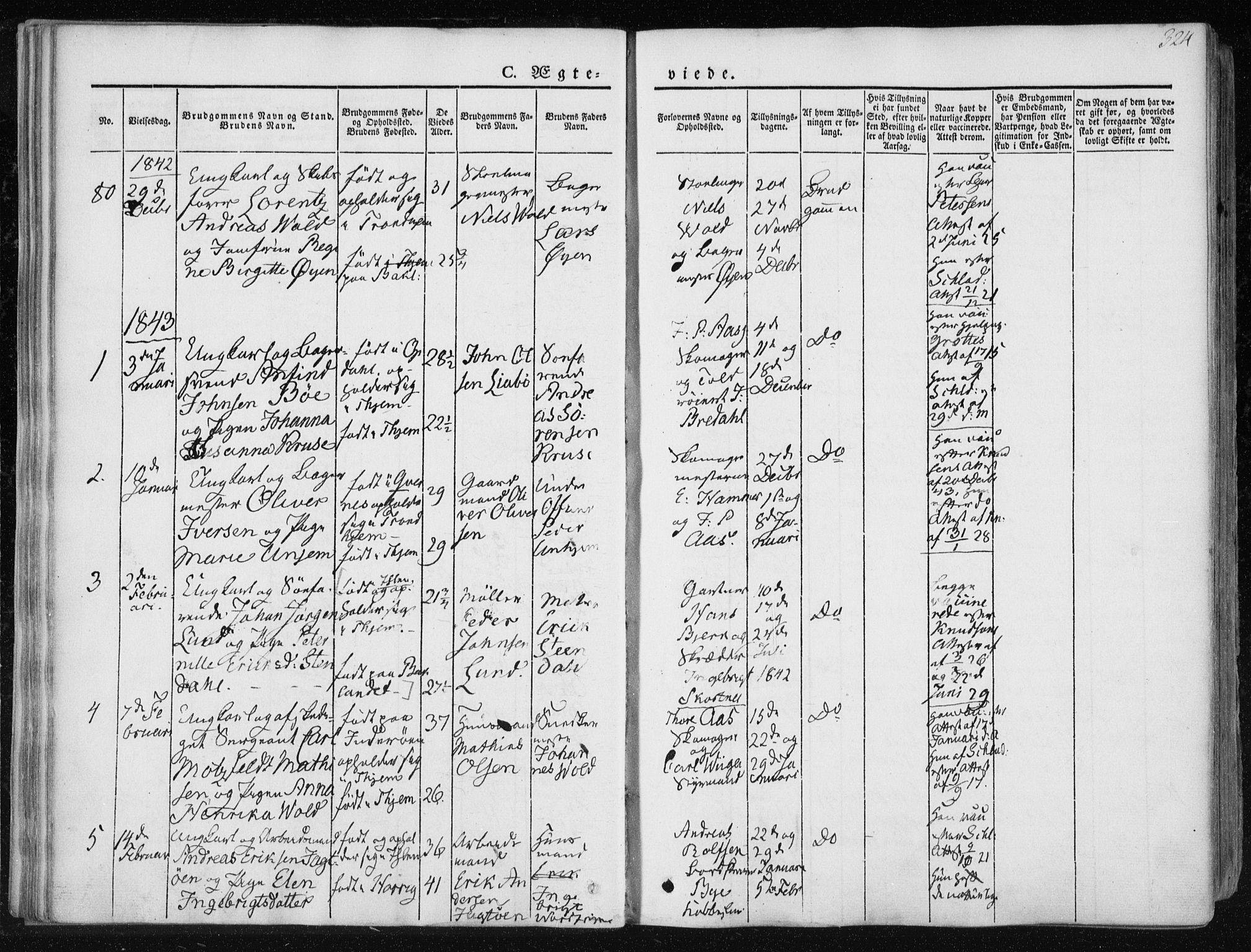 SAT, Ministerialprotokoller, klokkerbøker og fødselsregistre - Sør-Trøndelag, 601/L0049: Ministerialbok nr. 601A17, 1839-1847, s. 324