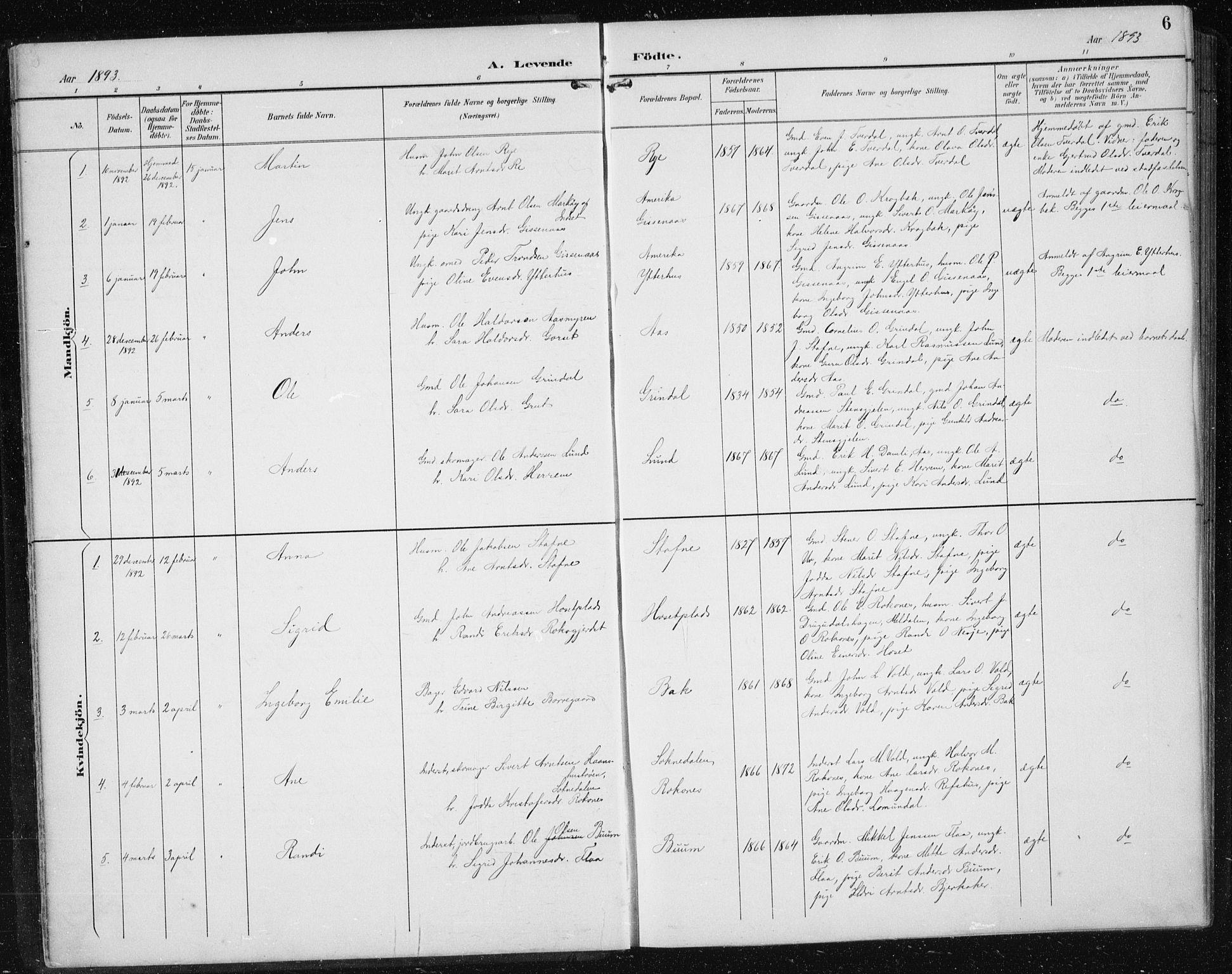 SAT, Ministerialprotokoller, klokkerbøker og fødselsregistre - Sør-Trøndelag, 674/L0876: Klokkerbok nr. 674C03, 1892-1912, s. 6