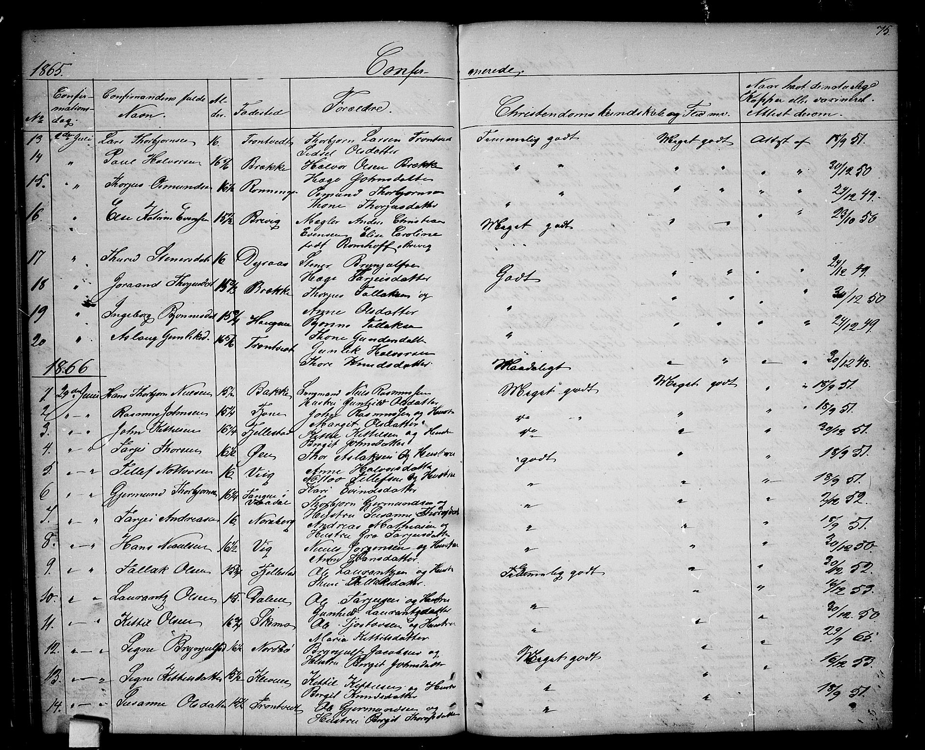 SAKO, Nissedal kirkebøker, G/Ga/L0002: Klokkerbok nr. I 2, 1861-1887, s. 75