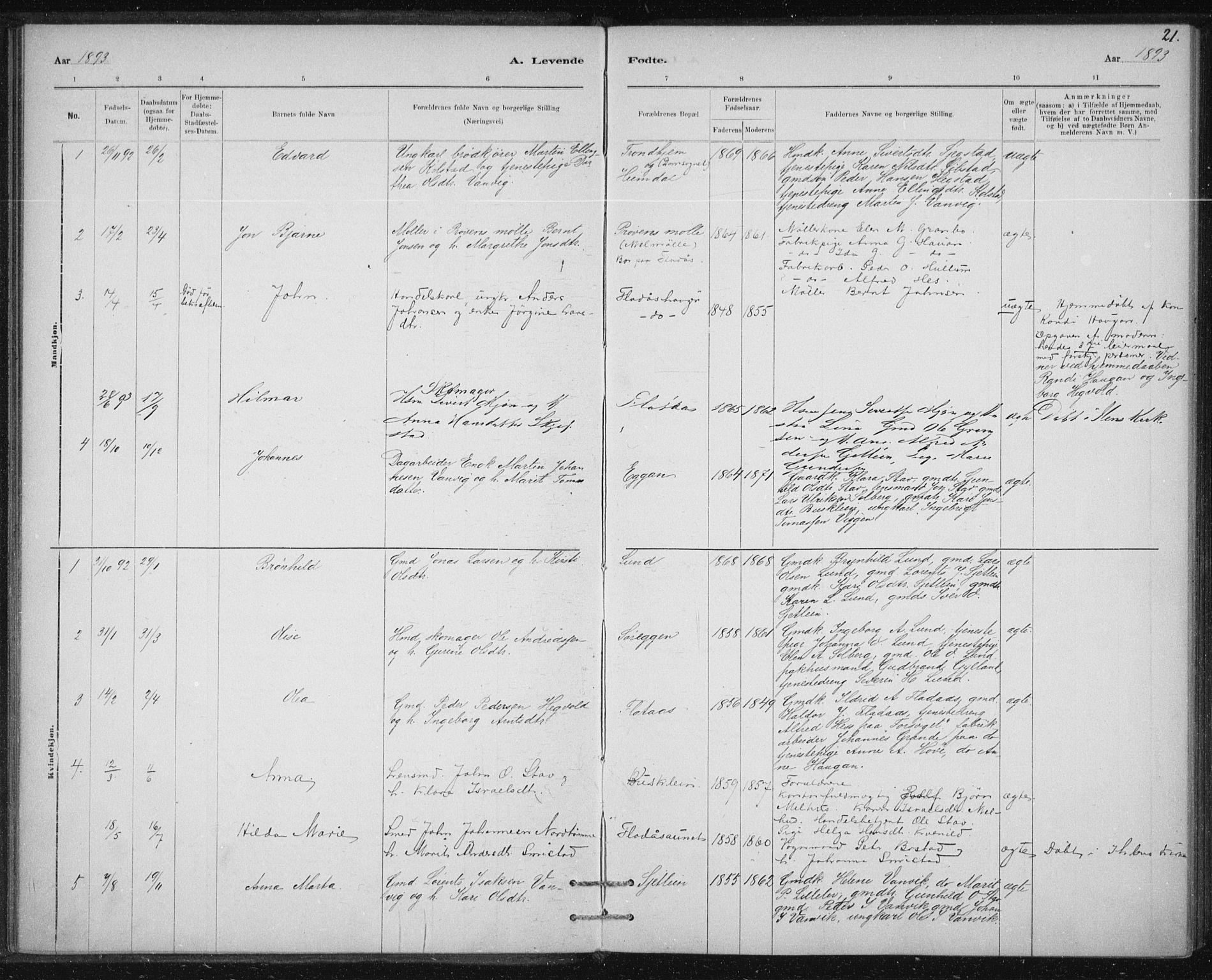 SAT, Ministerialprotokoller, klokkerbøker og fødselsregistre - Sør-Trøndelag, 613/L0392: Ministerialbok nr. 613A01, 1887-1906, s. 21