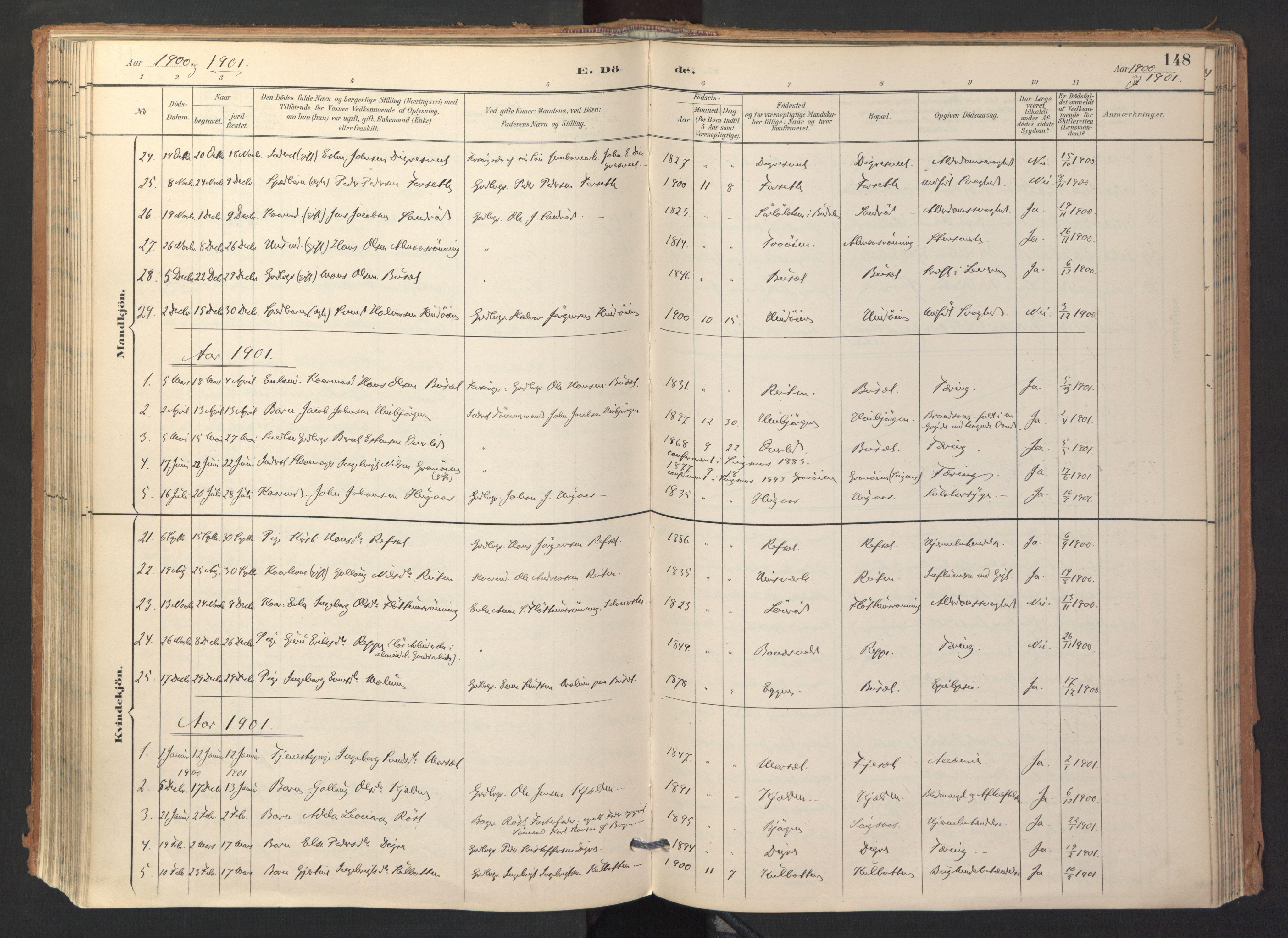 SAT, Ministerialprotokoller, klokkerbøker og fødselsregistre - Sør-Trøndelag, 688/L1025: Ministerialbok nr. 688A02, 1891-1909, s. 148