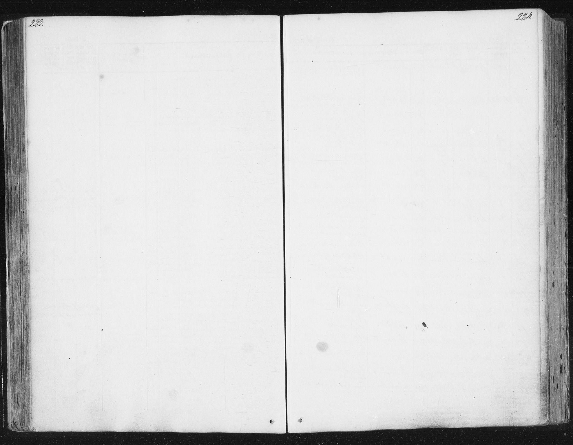 SAT, Ministerialprotokoller, klokkerbøker og fødselsregistre - Sør-Trøndelag, 630/L0494: Ministerialbok nr. 630A07, 1852-1868, s. 223-224