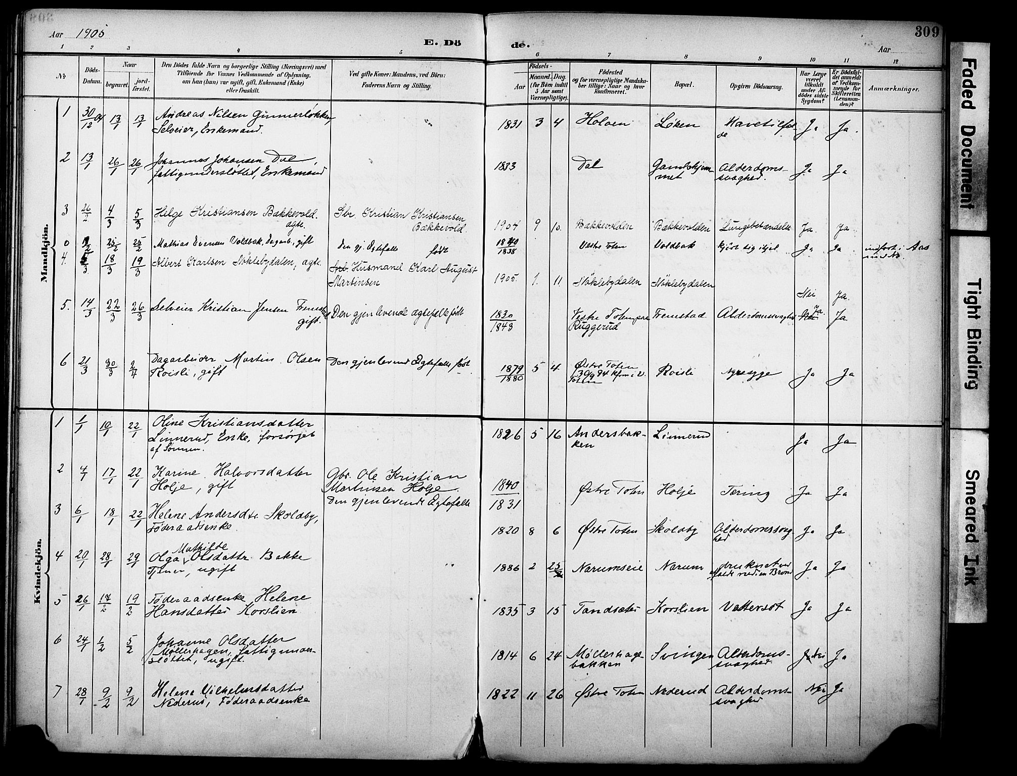 SAH, Vestre Toten prestekontor, H/Ha/Haa/L0013: Ministerialbok nr. 13, 1895-1911, s. 309