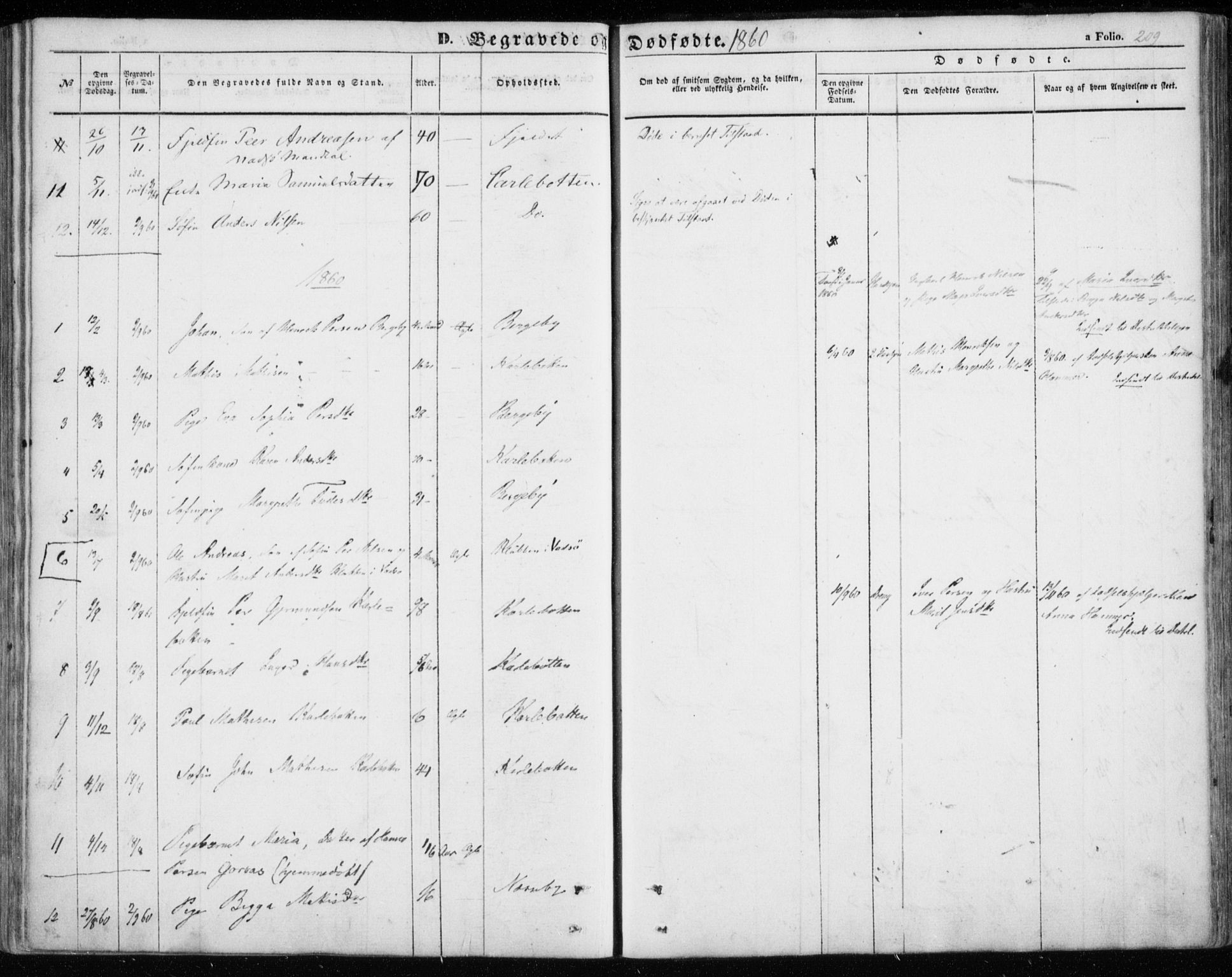 SATØ, Nesseby sokneprestkontor, H/Ha/L0002kirke: Ministerialbok nr. 2, 1856-1864, s. 209