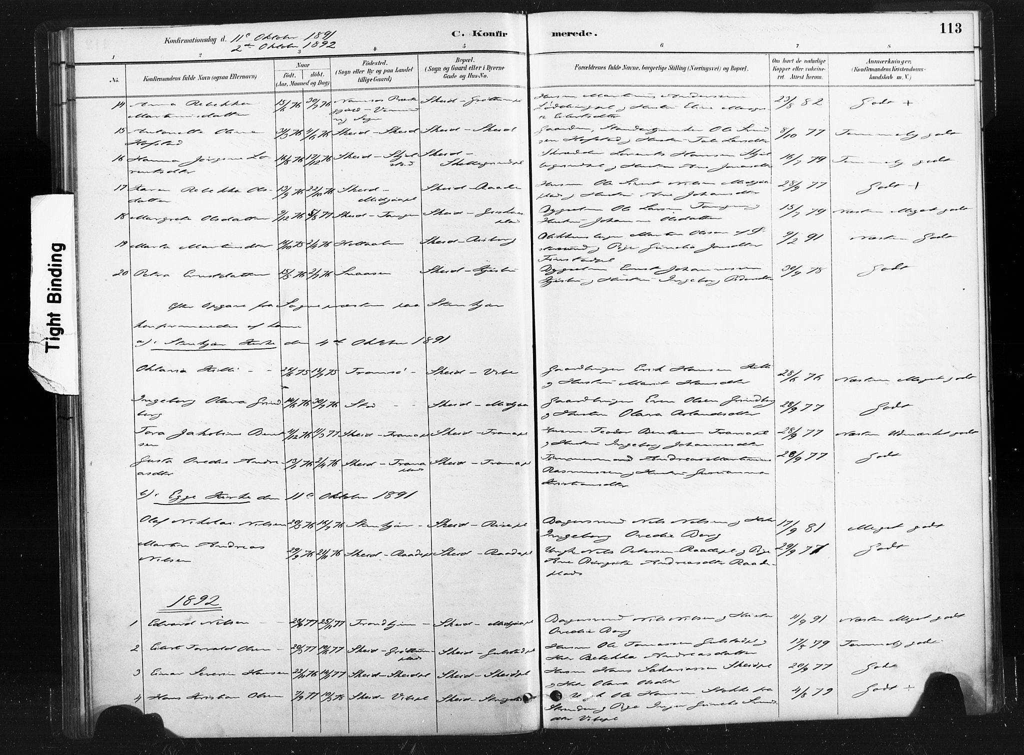SAT, Ministerialprotokoller, klokkerbøker og fødselsregistre - Nord-Trøndelag, 736/L0361: Ministerialbok nr. 736A01, 1884-1906, s. 113