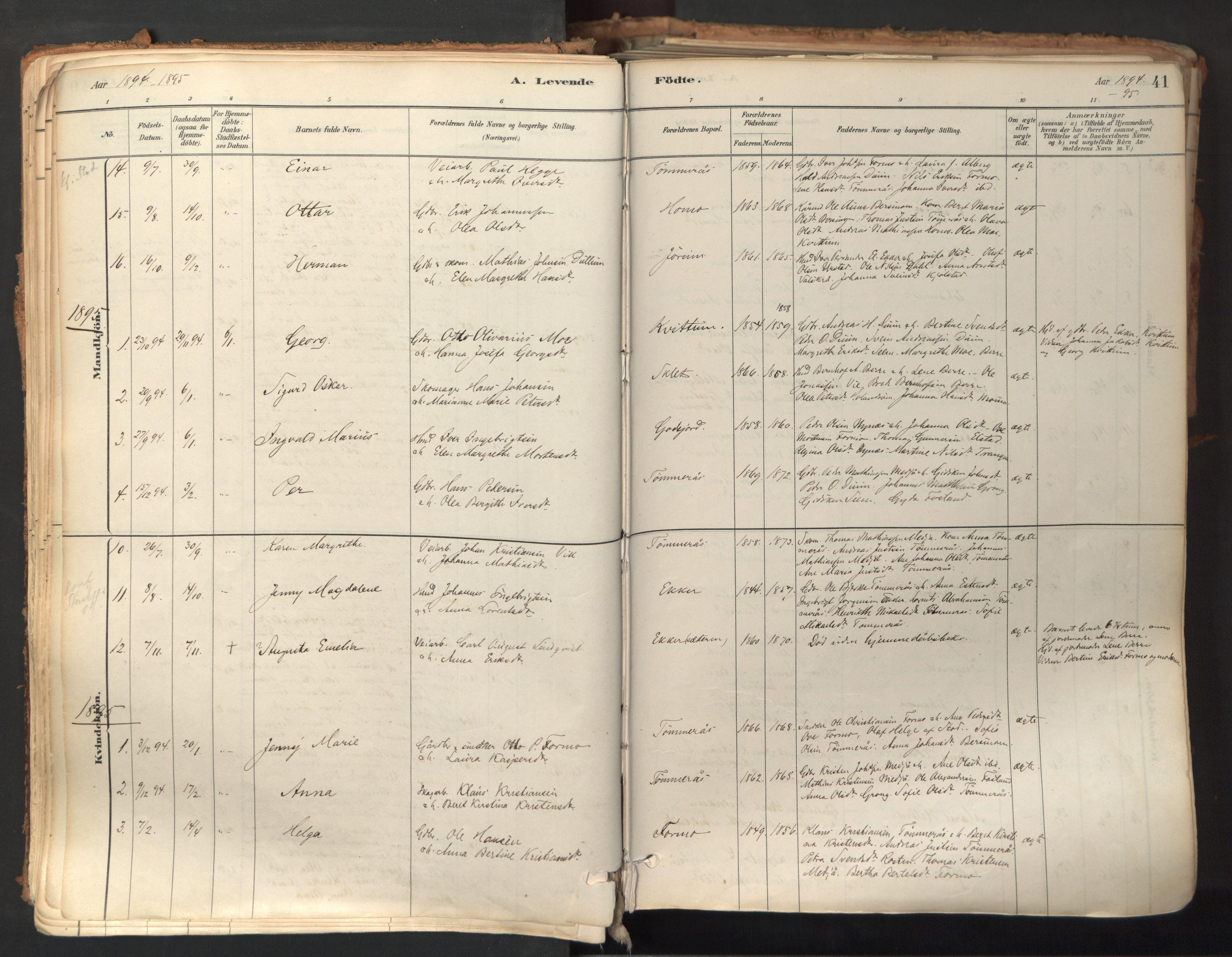 SAT, Ministerialprotokoller, klokkerbøker og fødselsregistre - Nord-Trøndelag, 758/L0519: Ministerialbok nr. 758A04, 1880-1926, s. 41