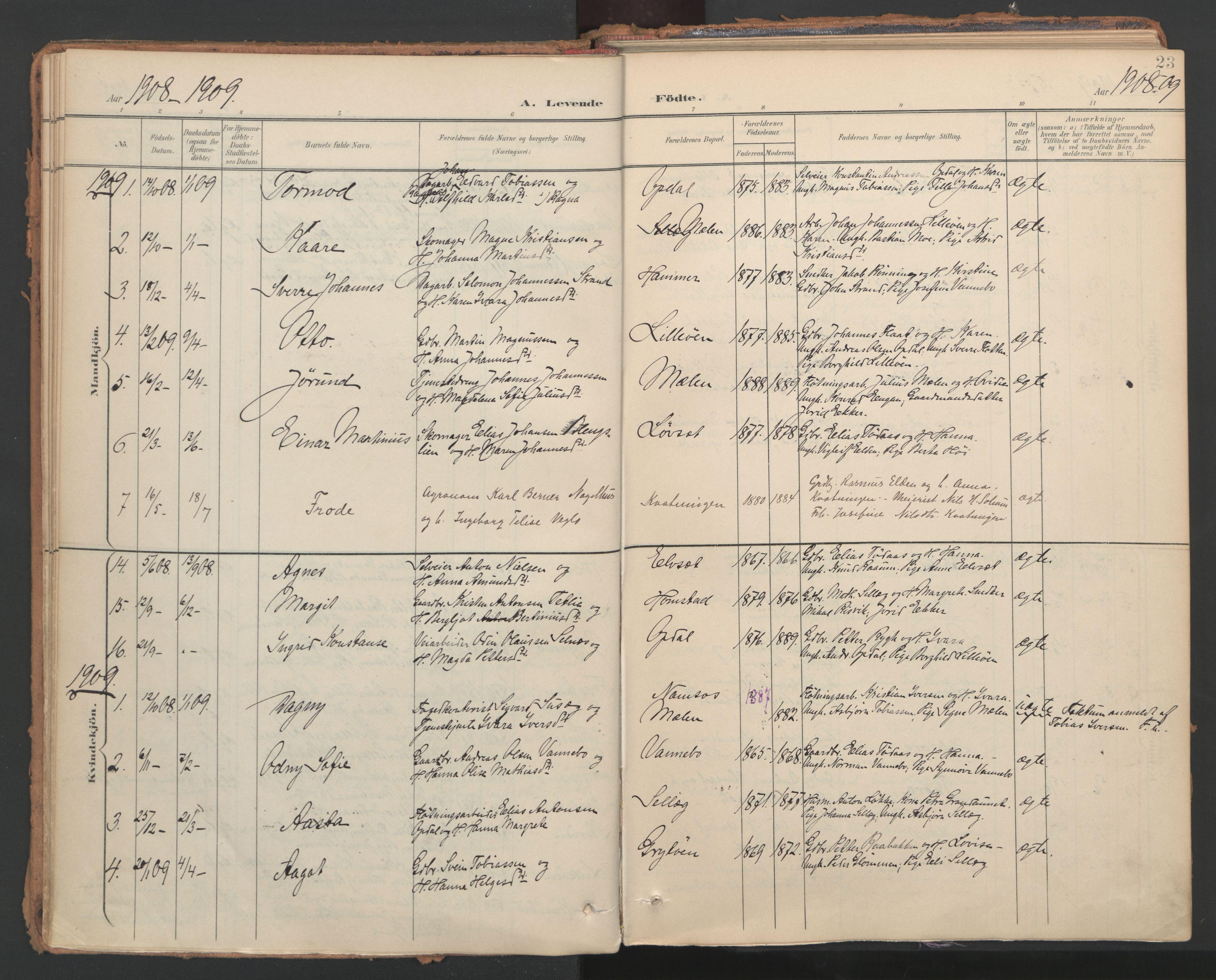 SAT, Ministerialprotokoller, klokkerbøker og fødselsregistre - Nord-Trøndelag, 766/L0564: Ministerialbok nr. 767A02, 1900-1932, s. 23