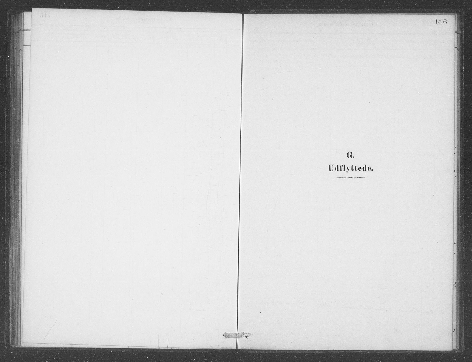 SAB, Aurland sokneprestembete, H/Ha/Had/L0001: Ministerialbok nr. D  1, 1880-1903, s. 116