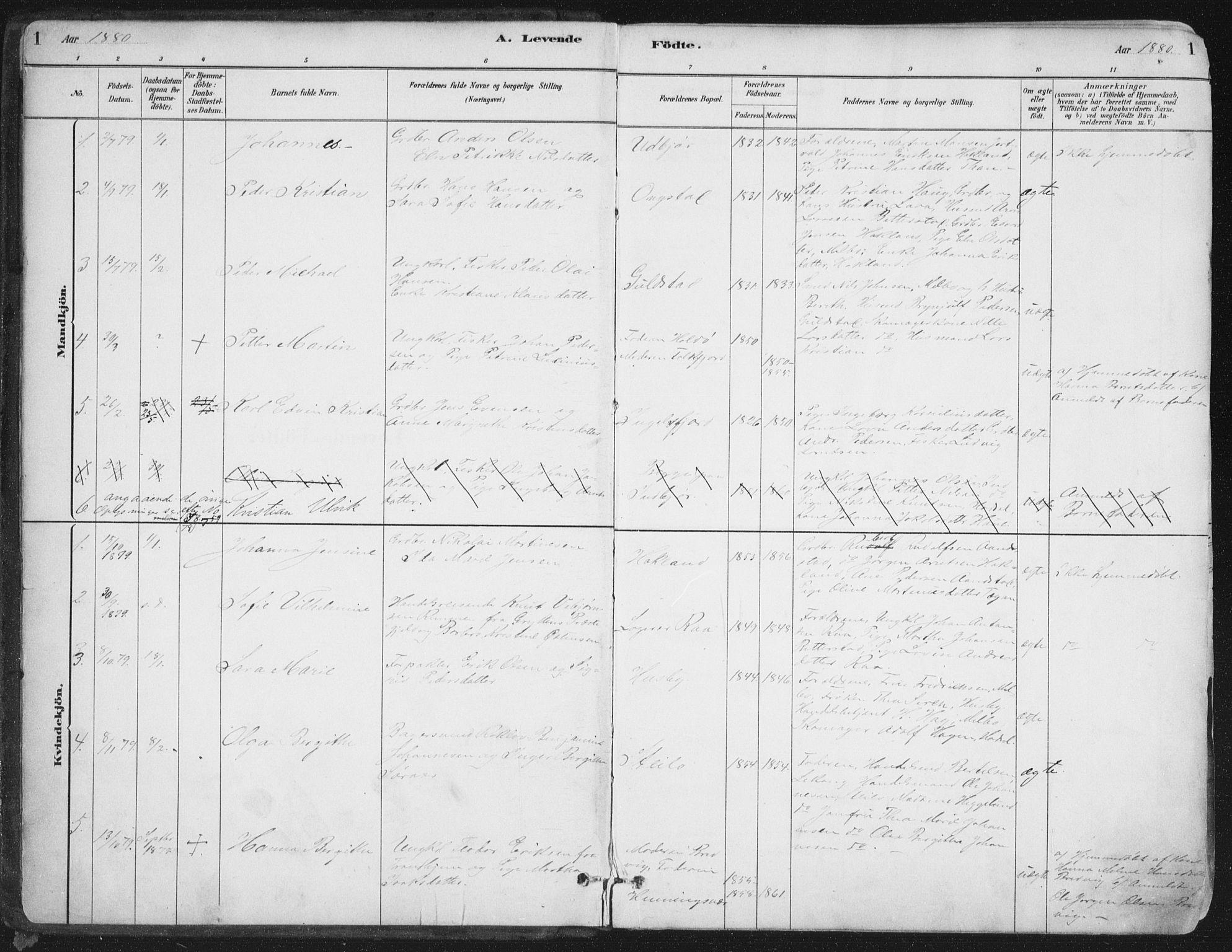 SAT, Ministerialprotokoller, klokkerbøker og fødselsregistre - Nordland, 888/L1244: Ministerialbok nr. 888A10, 1880-1890, s. 1