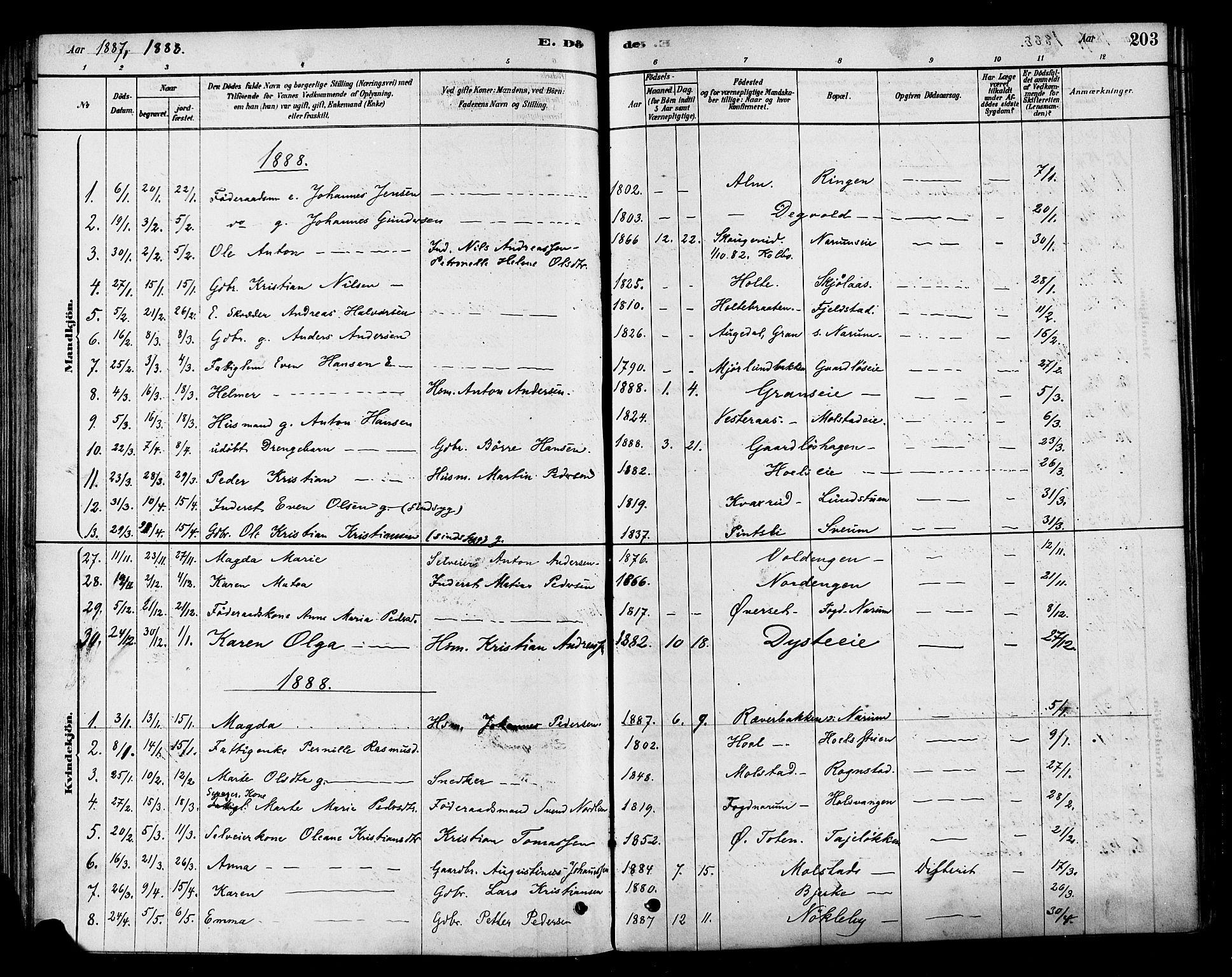 SAH, Vestre Toten prestekontor, Ministerialbok nr. 10, 1878-1894, s. 203