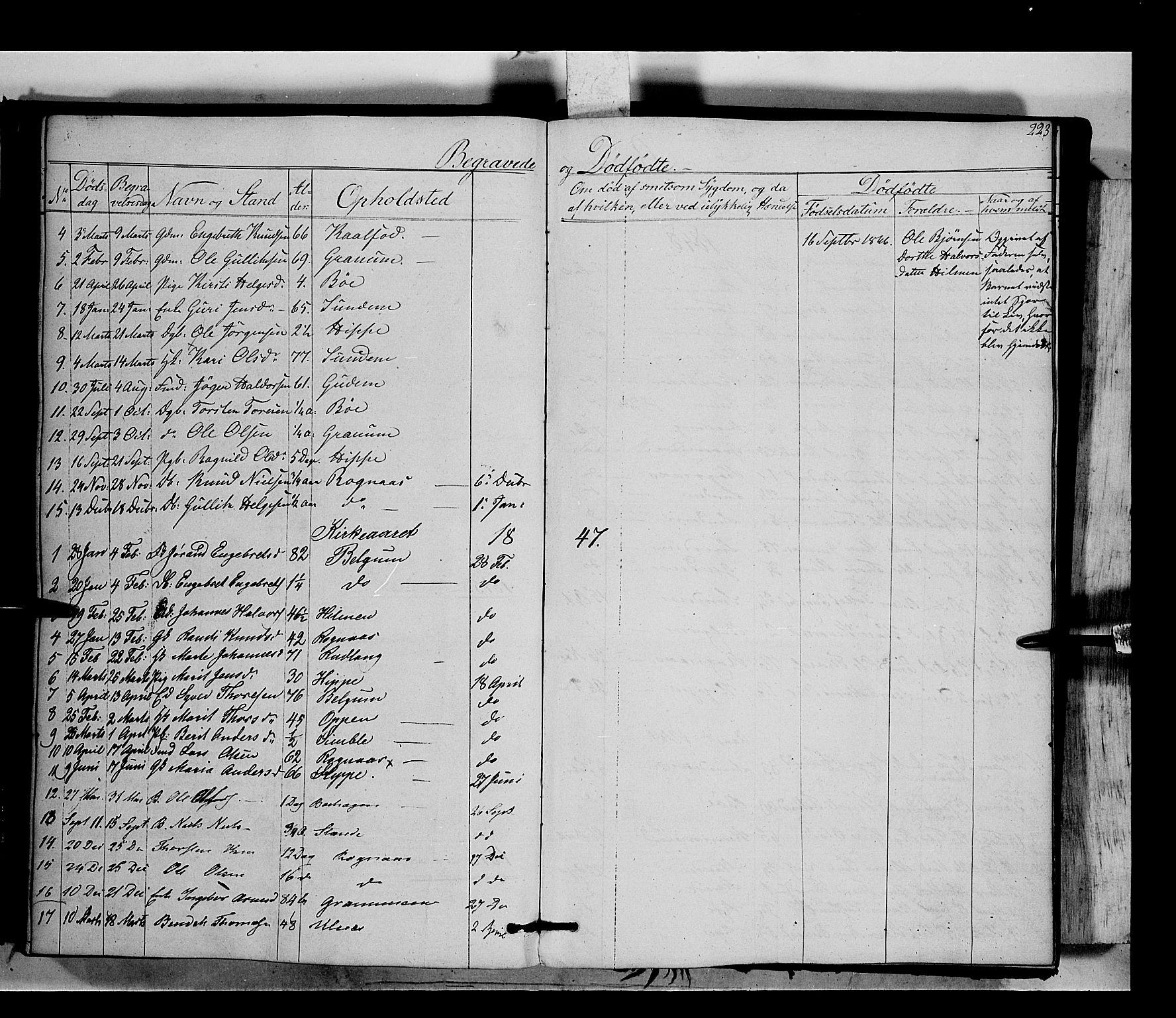 SAH, Nord-Aurdal prestekontor, Ministerialbok nr. 6, 1842-1863, s. 223