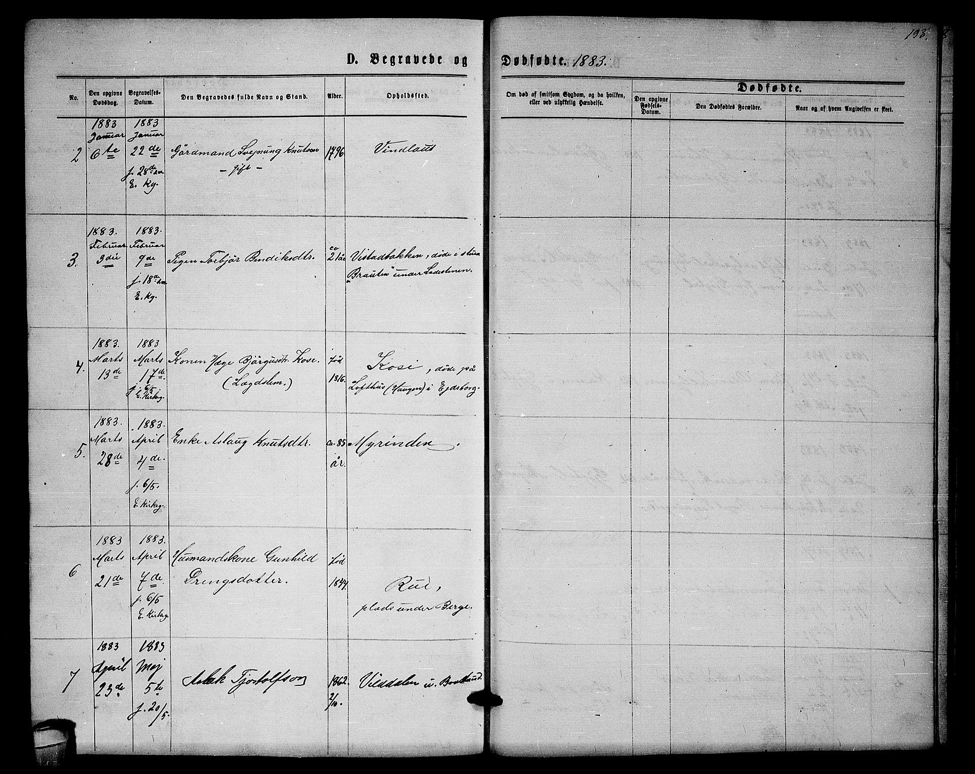 SAKO, Lårdal kirkebøker, G/Gb/L0002: Klokkerbok nr. II 2, 1865-1888, s. 193