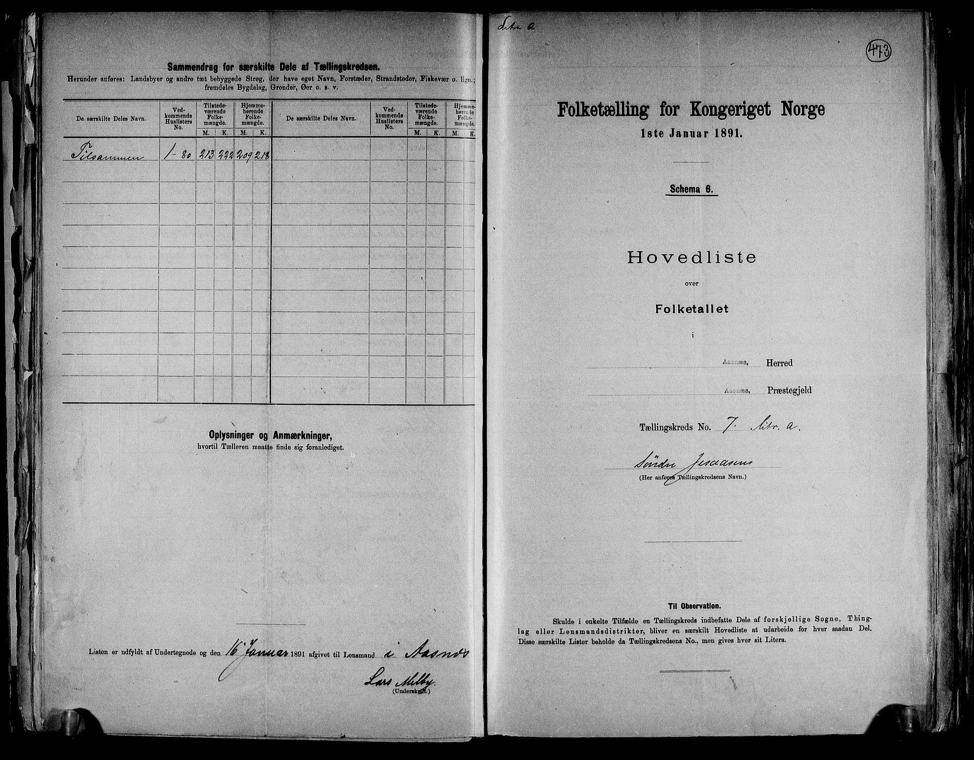 RA, Folketelling 1891 for 0425 Åsnes herred, 1891, s. 20