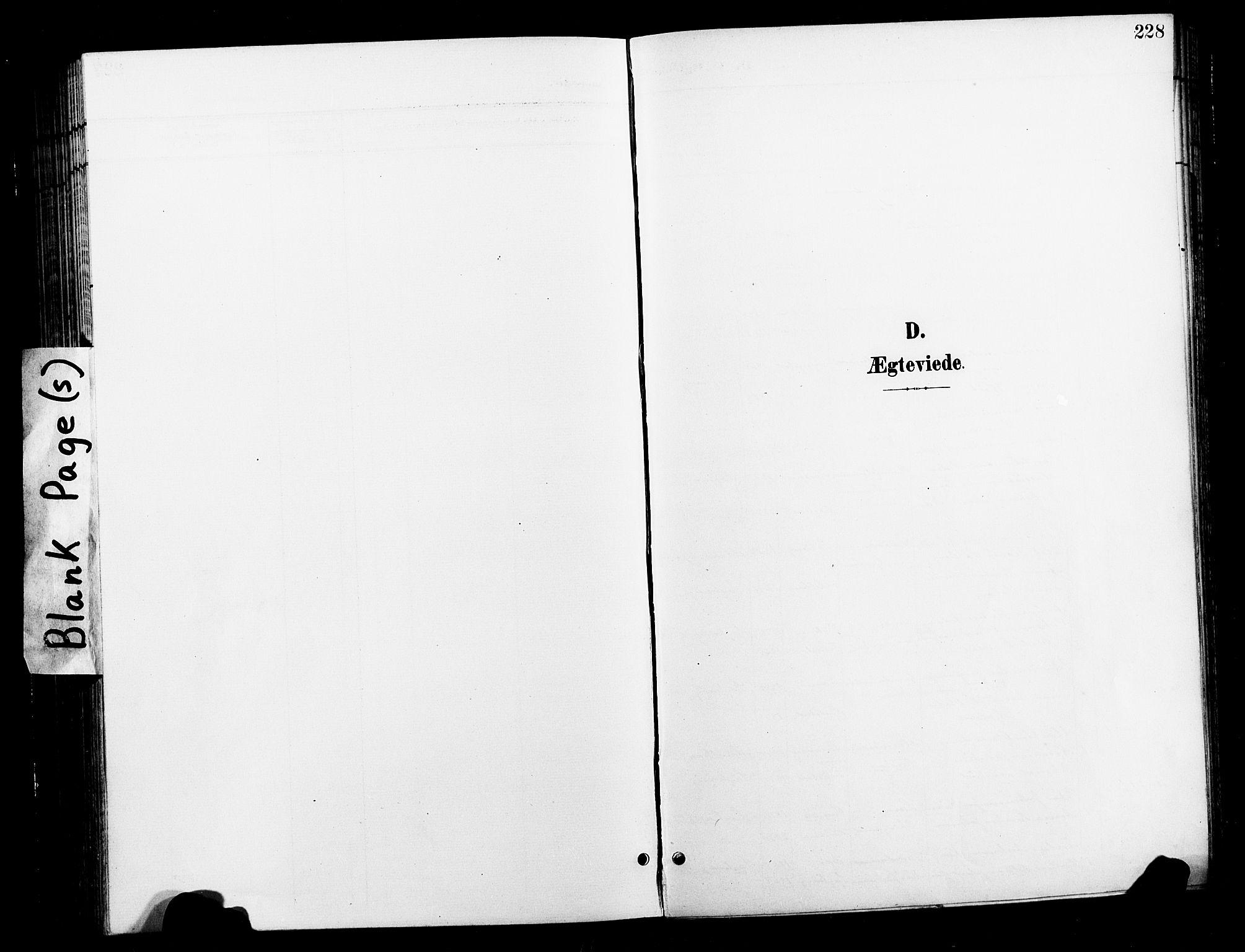 SAT, Ministerialprotokoller, klokkerbøker og fødselsregistre - Nord-Trøndelag, 730/L0302: Klokkerbok nr. 730C05, 1898-1924, s. 228