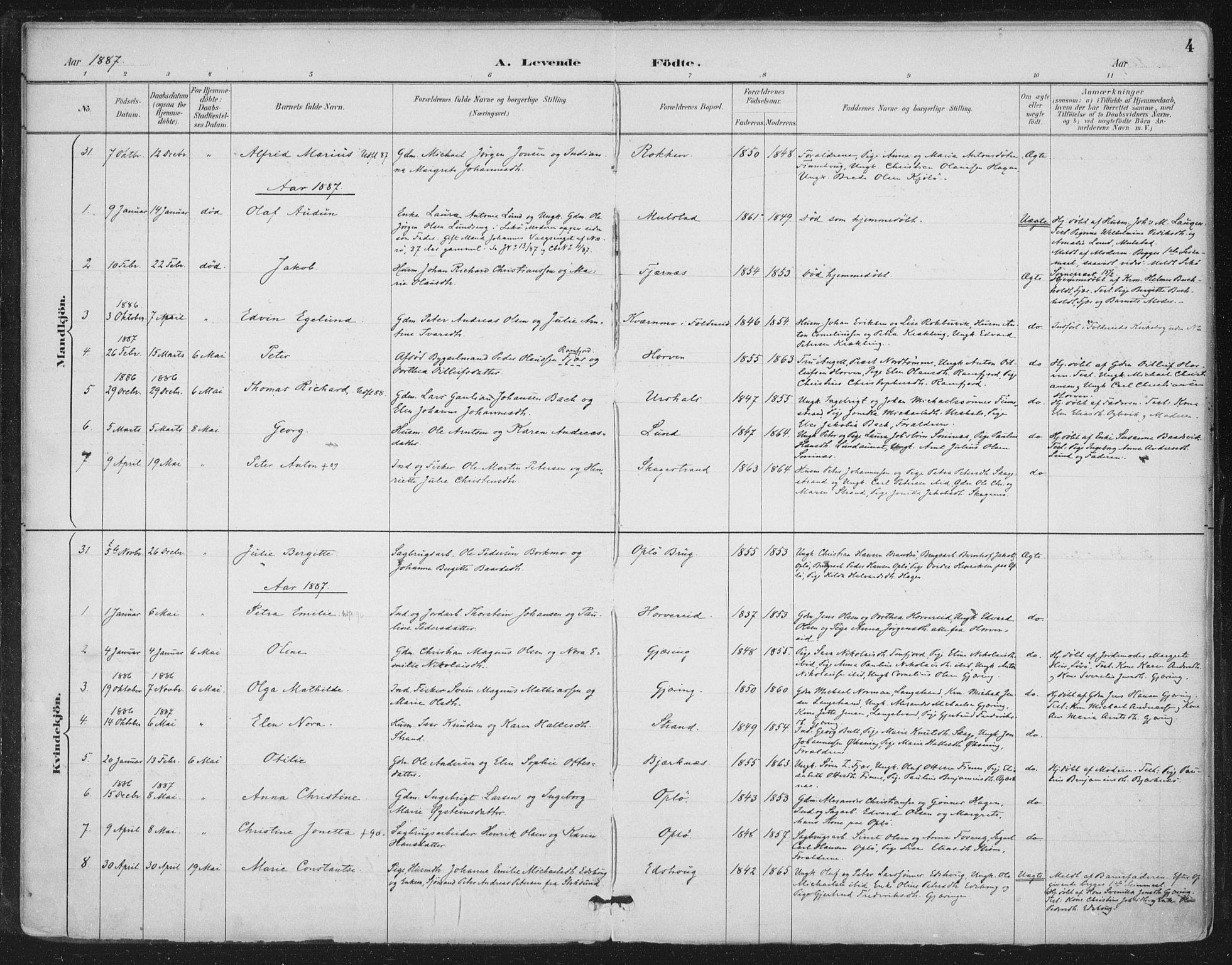 SAT, Ministerialprotokoller, klokkerbøker og fødselsregistre - Nord-Trøndelag, 780/L0644: Ministerialbok nr. 780A08, 1886-1903, s. 4