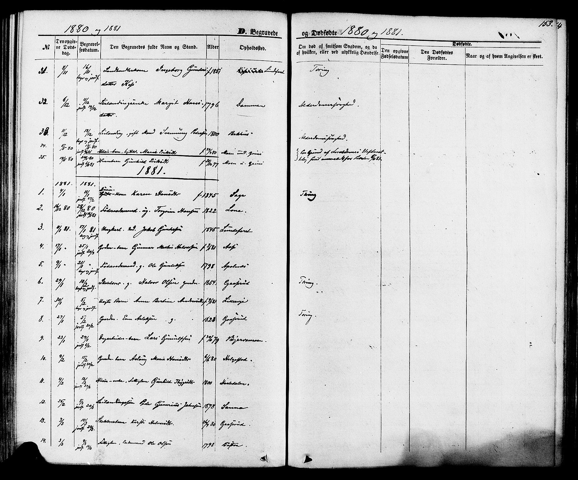 SAKO, Lunde kirkebøker, F/Fa/L0001: Ministerialbok nr. I 1, 1866-1883, s. 153