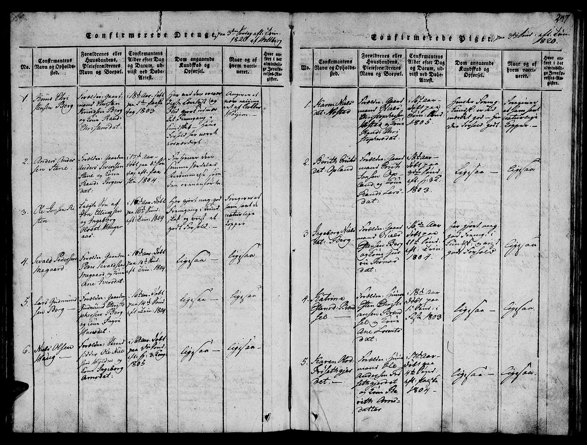 SAT, Ministerialprotokoller, klokkerbøker og fødselsregistre - Sør-Trøndelag, 612/L0372: Ministerialbok nr. 612A06 /1, 1816-1828, s. 247