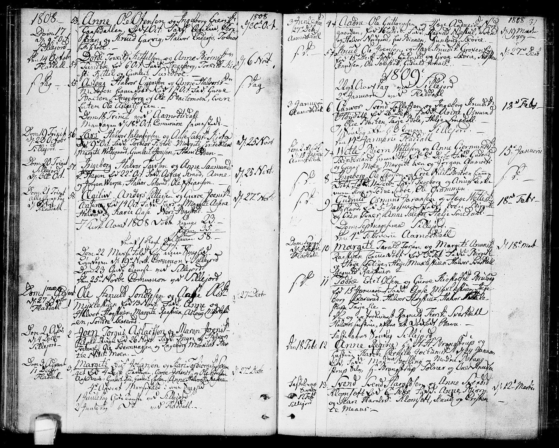 SAKO, Seljord kirkebøker, F/Fa/L0009: Ministerialbok nr. I 9, 1801-1814, s. 31