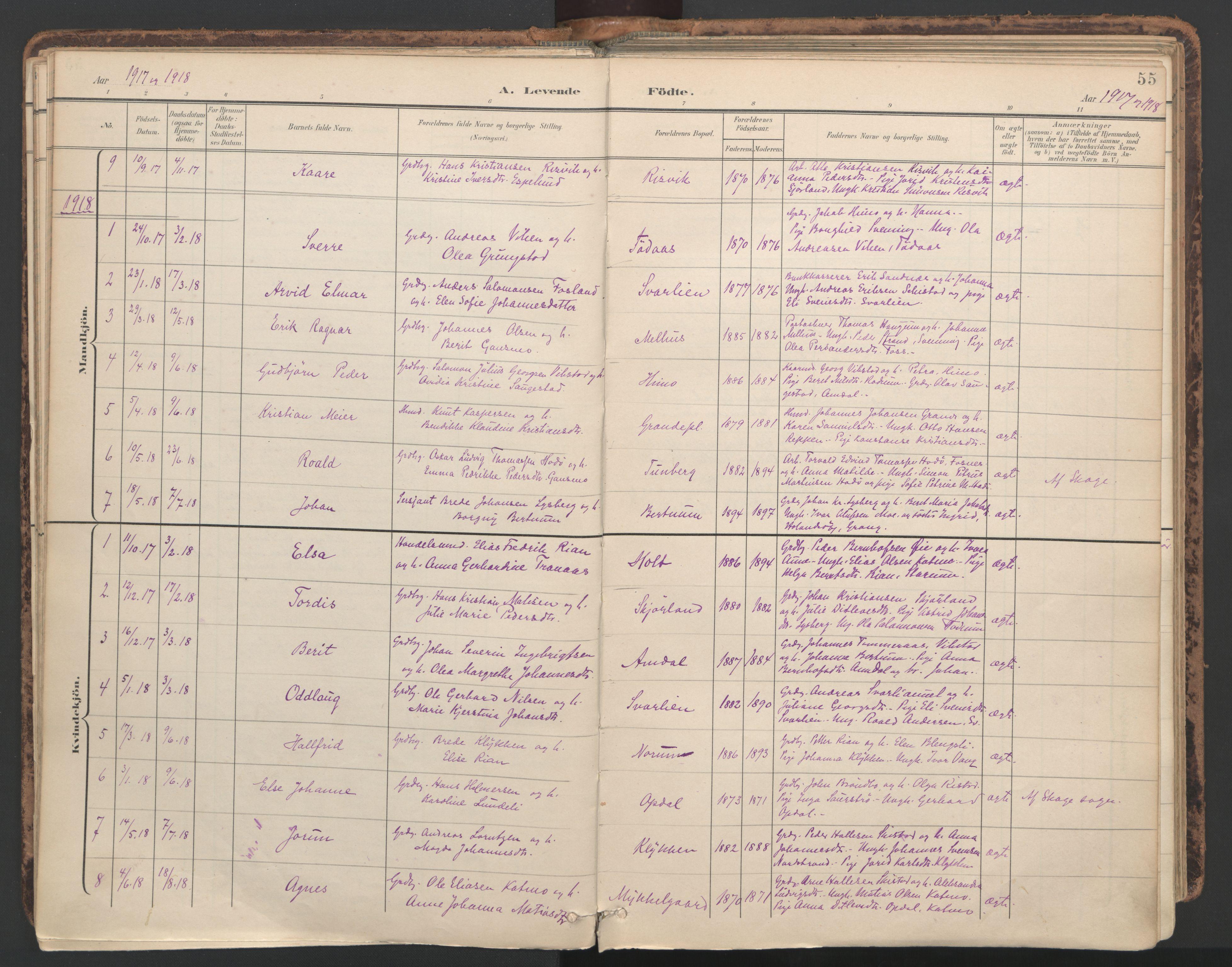 SAT, Ministerialprotokoller, klokkerbøker og fødselsregistre - Nord-Trøndelag, 764/L0556: Ministerialbok nr. 764A11, 1897-1924, s. 55