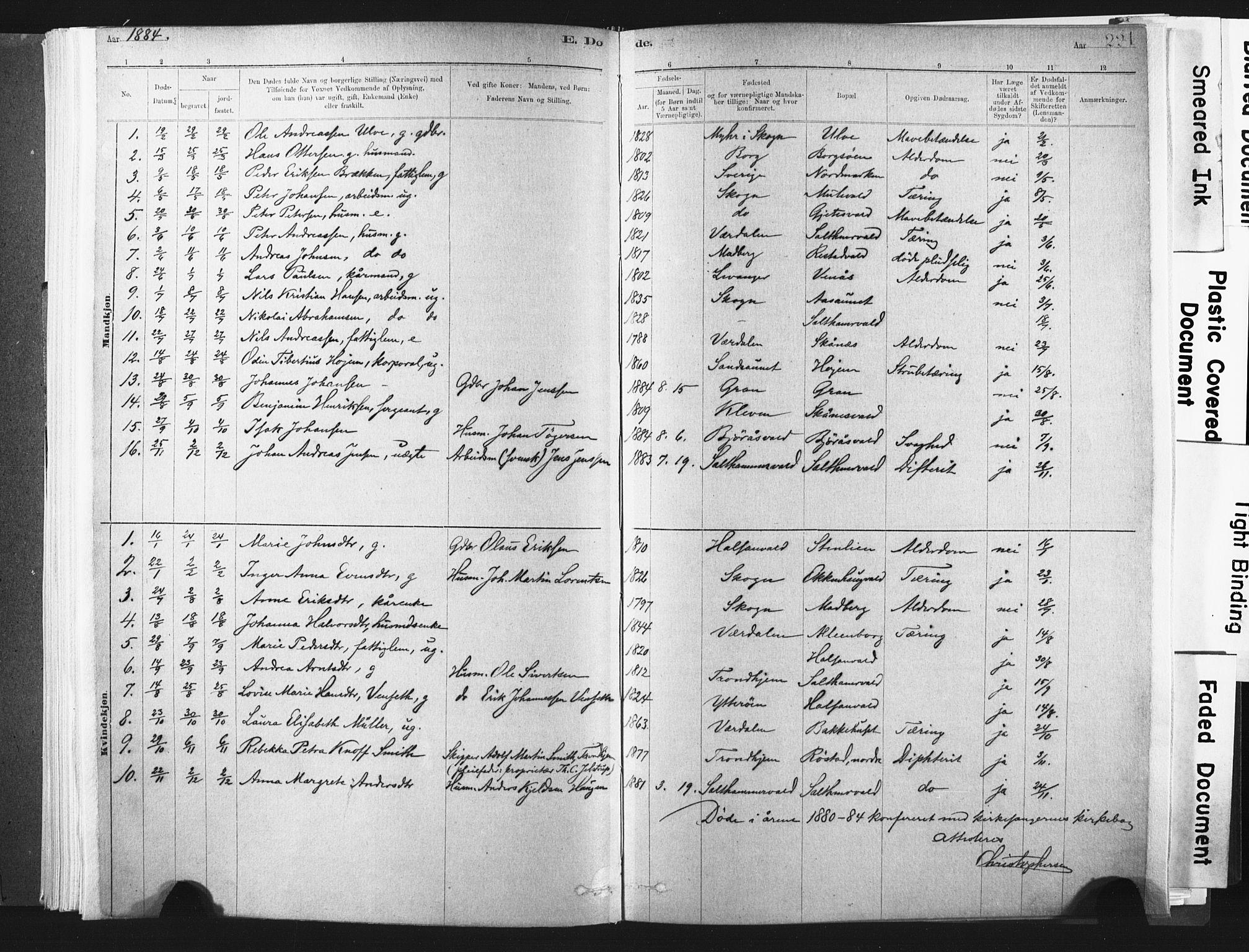 SAT, Ministerialprotokoller, klokkerbøker og fødselsregistre - Nord-Trøndelag, 721/L0207: Ministerialbok nr. 721A02, 1880-1911, s. 221