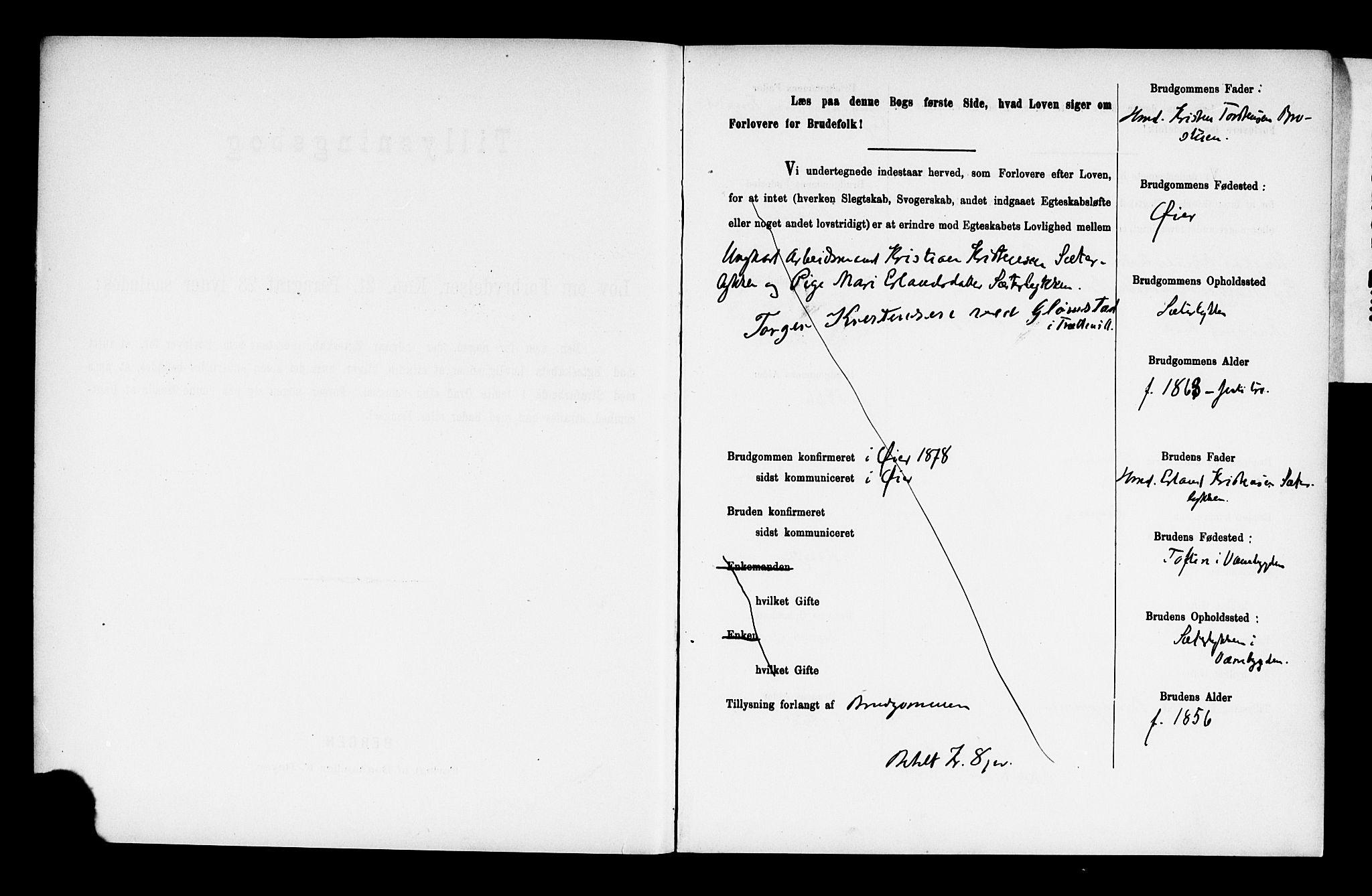 SAH, Ringebu prestekontor, Lysningsprotokoll nr. 2, 1886-1894