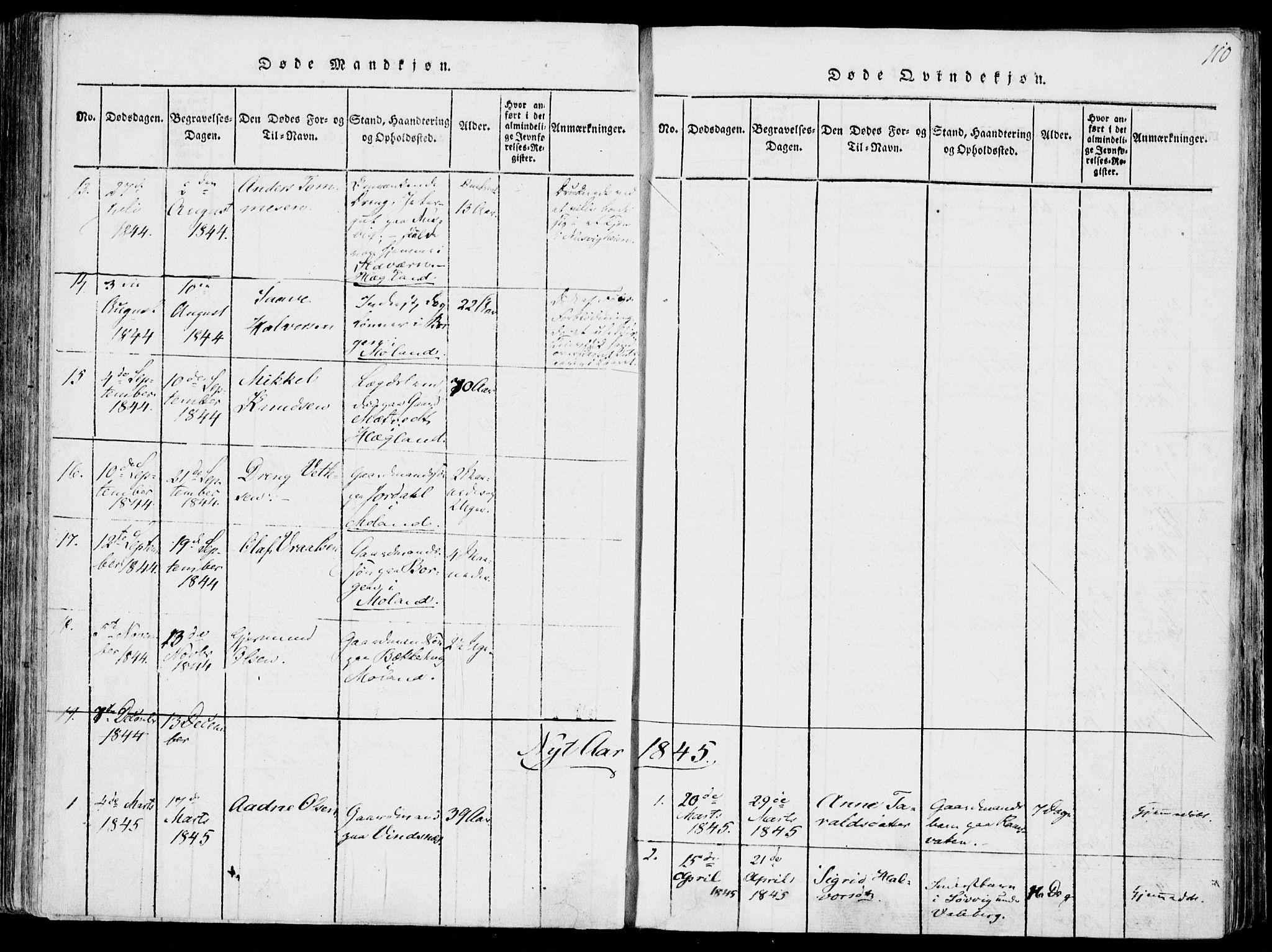 SAKO, Fyresdal kirkebøker, F/Fa/L0004: Ministerialbok nr. I 4, 1815-1854, s. 110