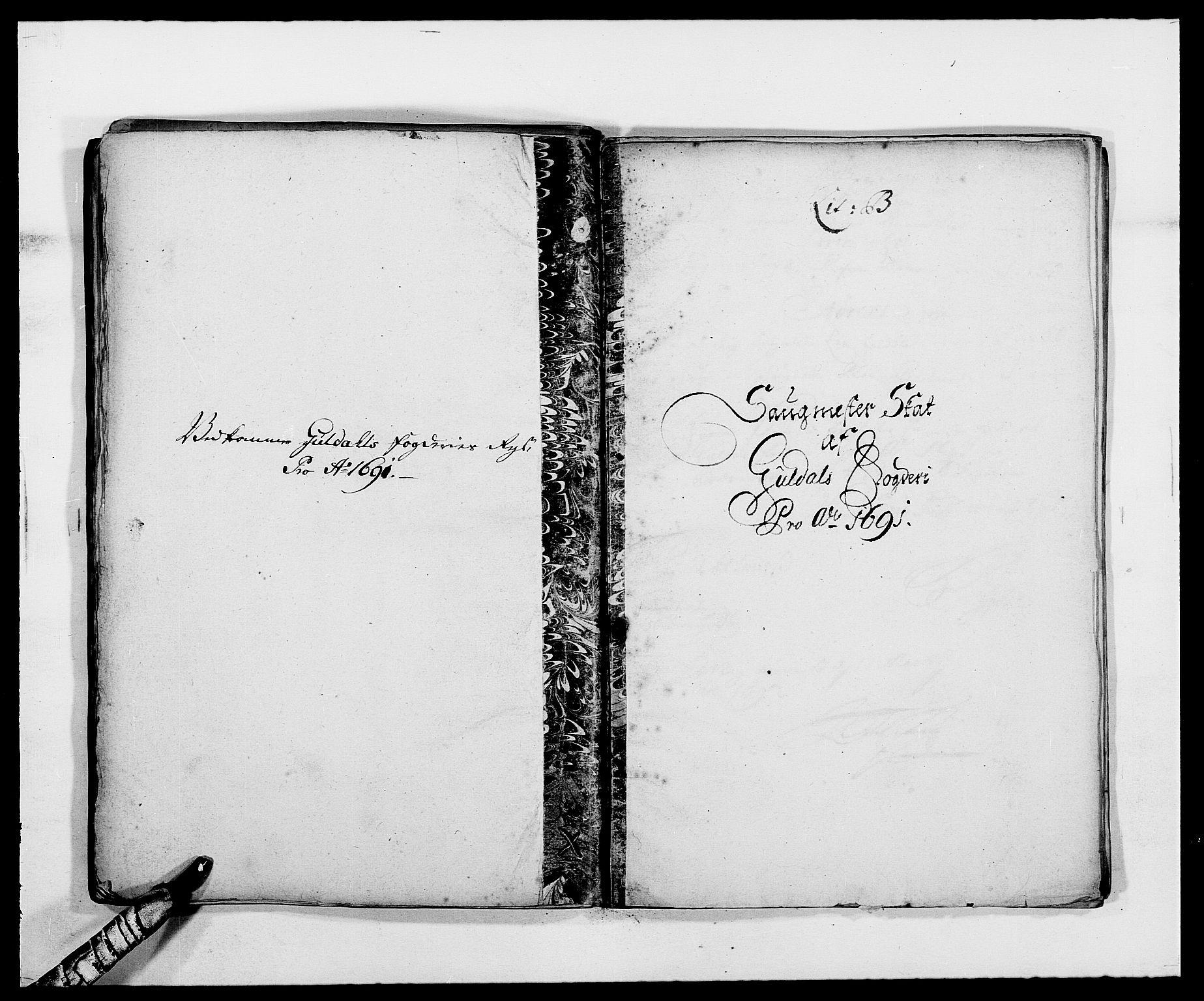RA, Rentekammeret inntil 1814, Reviderte regnskaper, Fogderegnskap, R59/L3941: Fogderegnskap Gauldal, 1691, s. 61