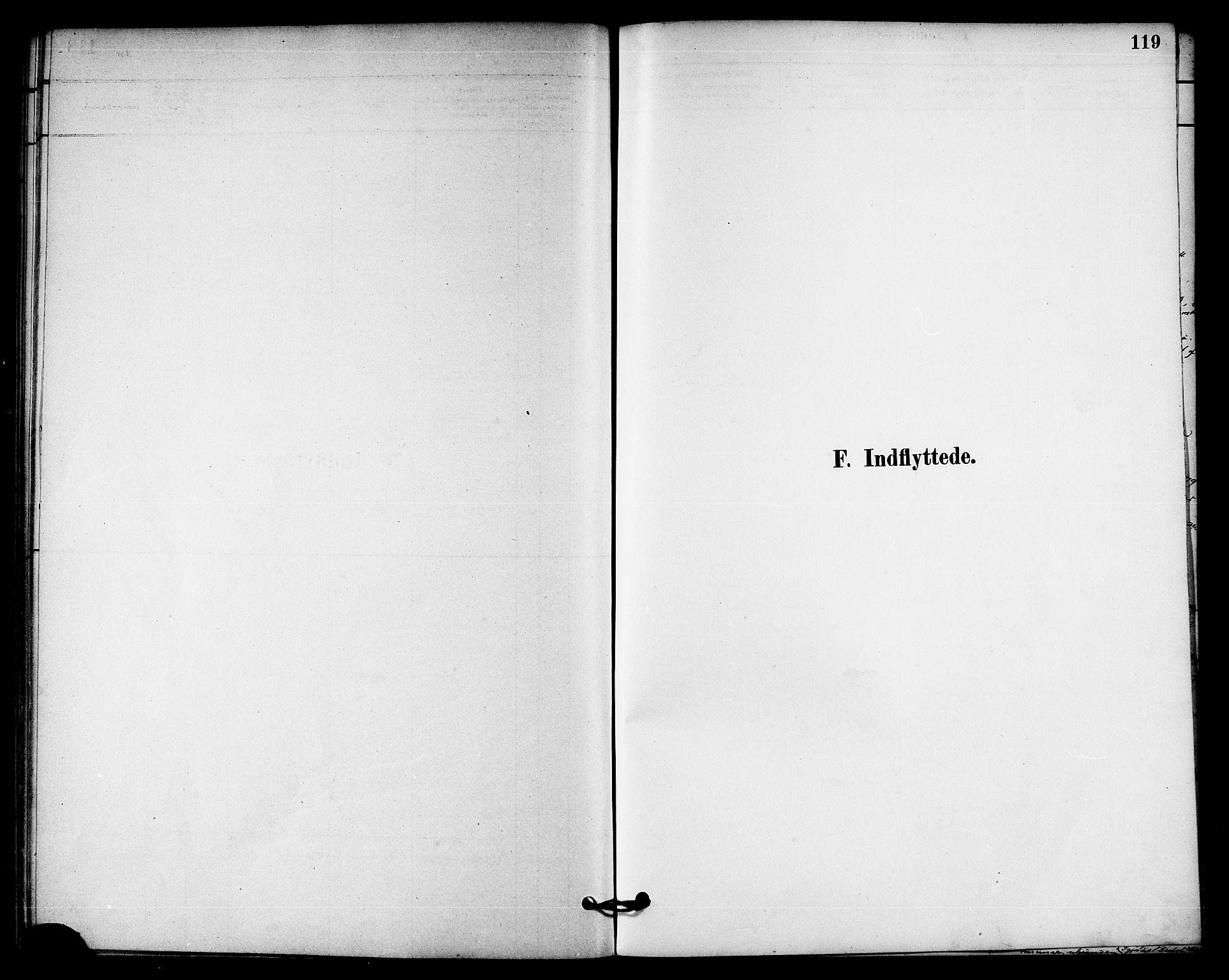 SAT, Ministerialprotokoller, klokkerbøker og fødselsregistre - Nord-Trøndelag, 740/L0378: Ministerialbok nr. 740A01, 1881-1895, s. 119