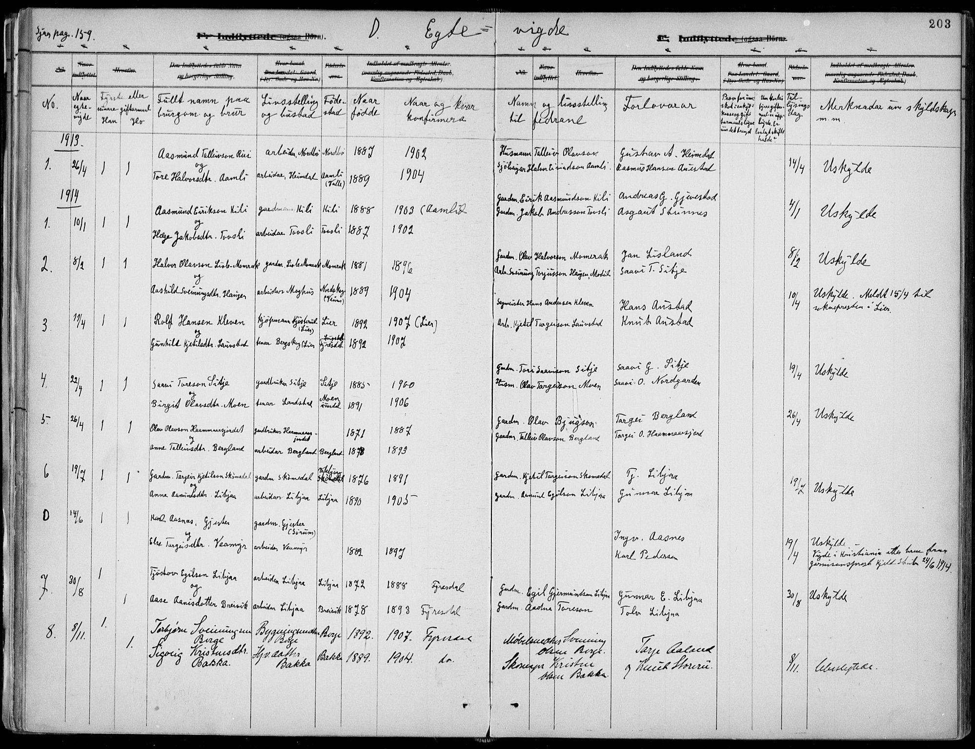 SAKO, Fyresdal kirkebøker, F/Fa/L0007: Ministerialbok nr. I 7, 1887-1914, s. 203