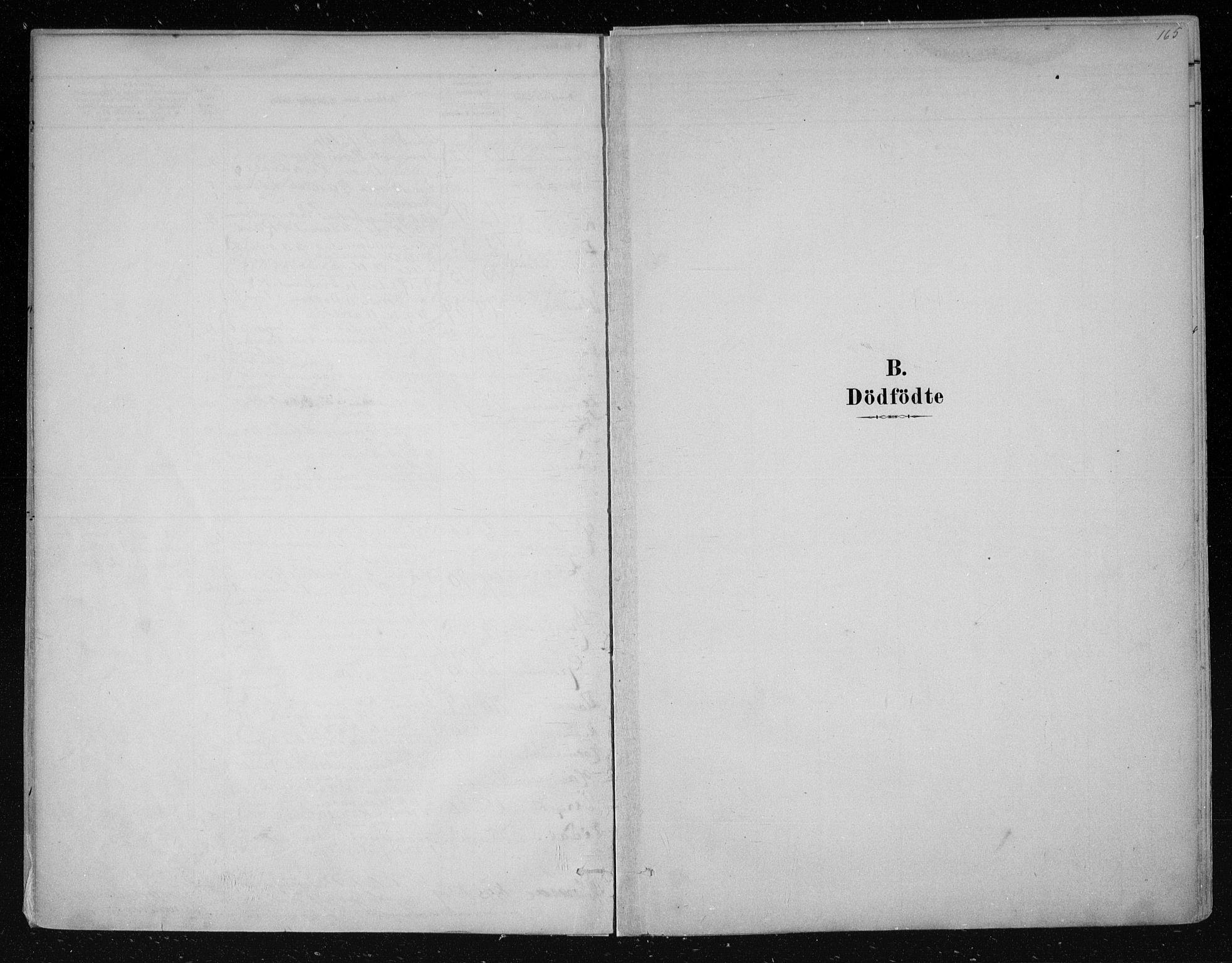 SAKO, Nes kirkebøker, F/Fa/L0011: Ministerialbok nr. 11, 1881-1912, s. 165