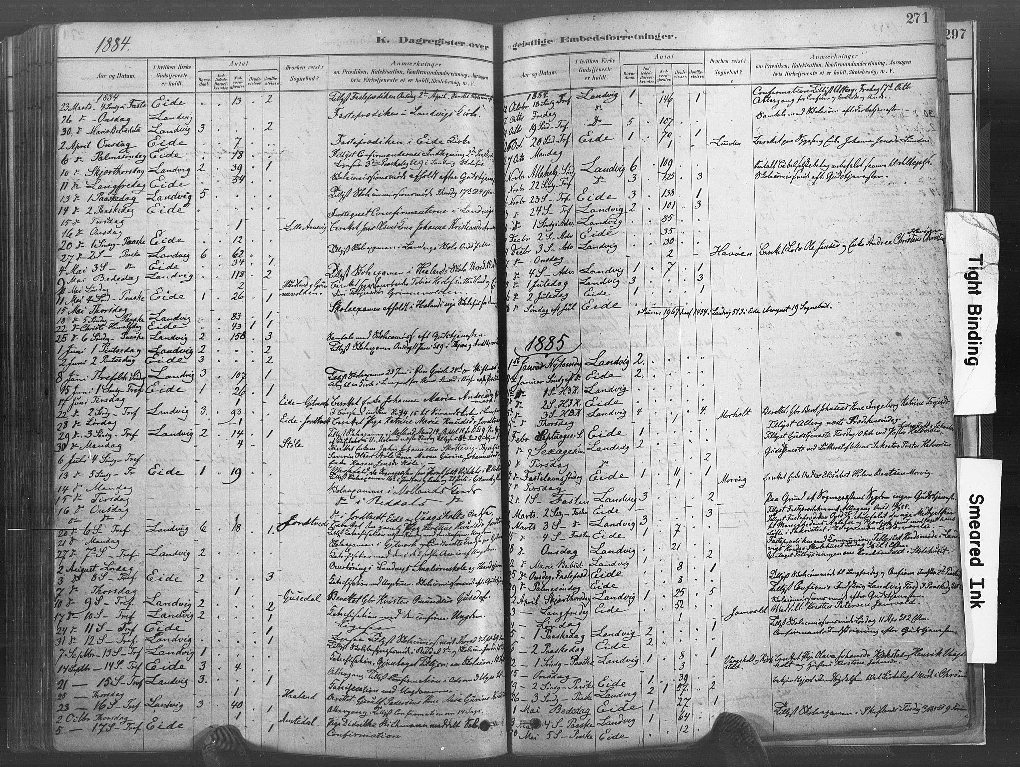 SAK, Hommedal sokneprestkontor, F/Fa/Fab/L0006: Ministerialbok nr. A 6, 1878-1897, s. 271