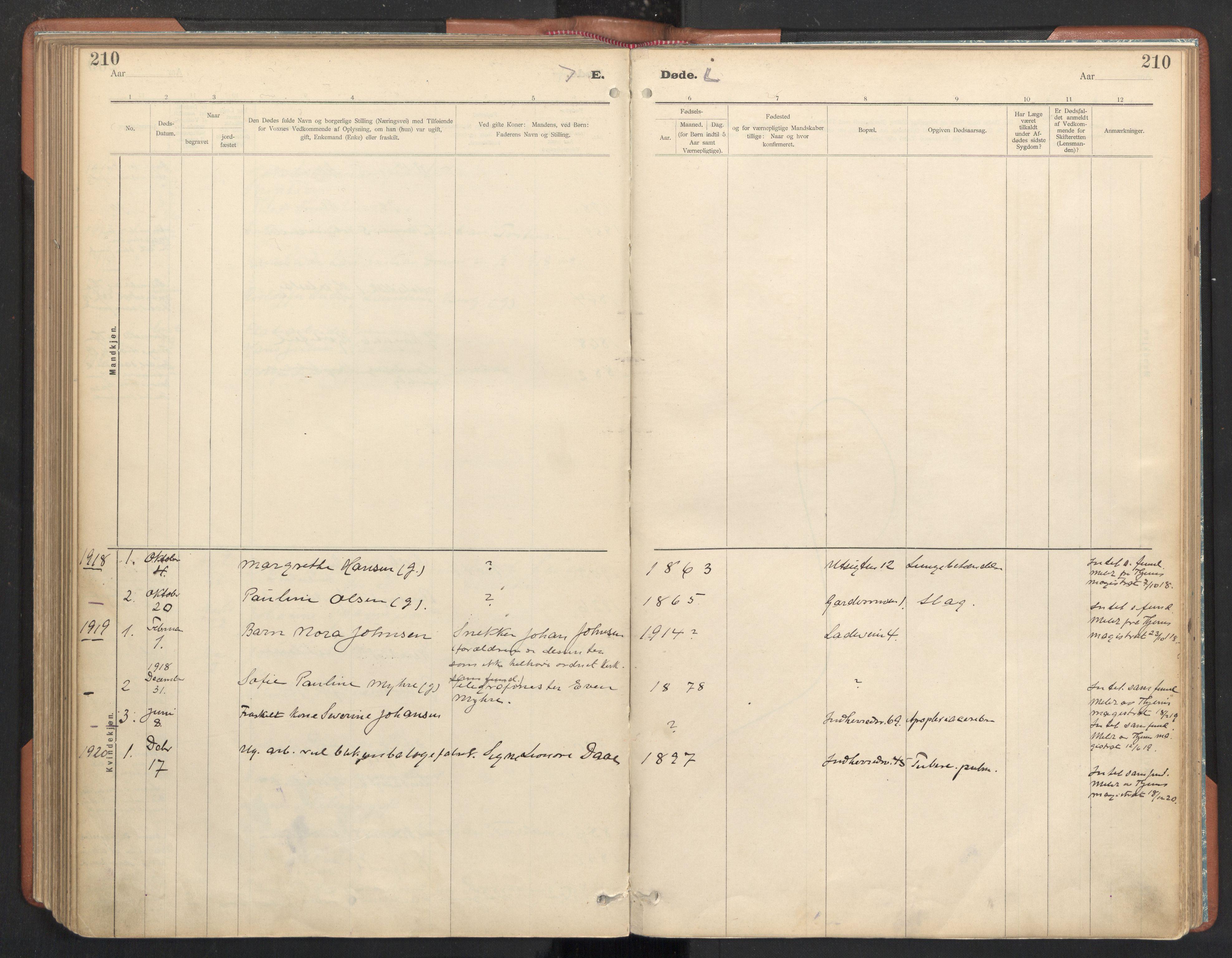 SAT, Ministerialprotokoller, klokkerbøker og fødselsregistre - Sør-Trøndelag, 605/L0244: Ministerialbok nr. 605A06, 1908-1954, s. 210