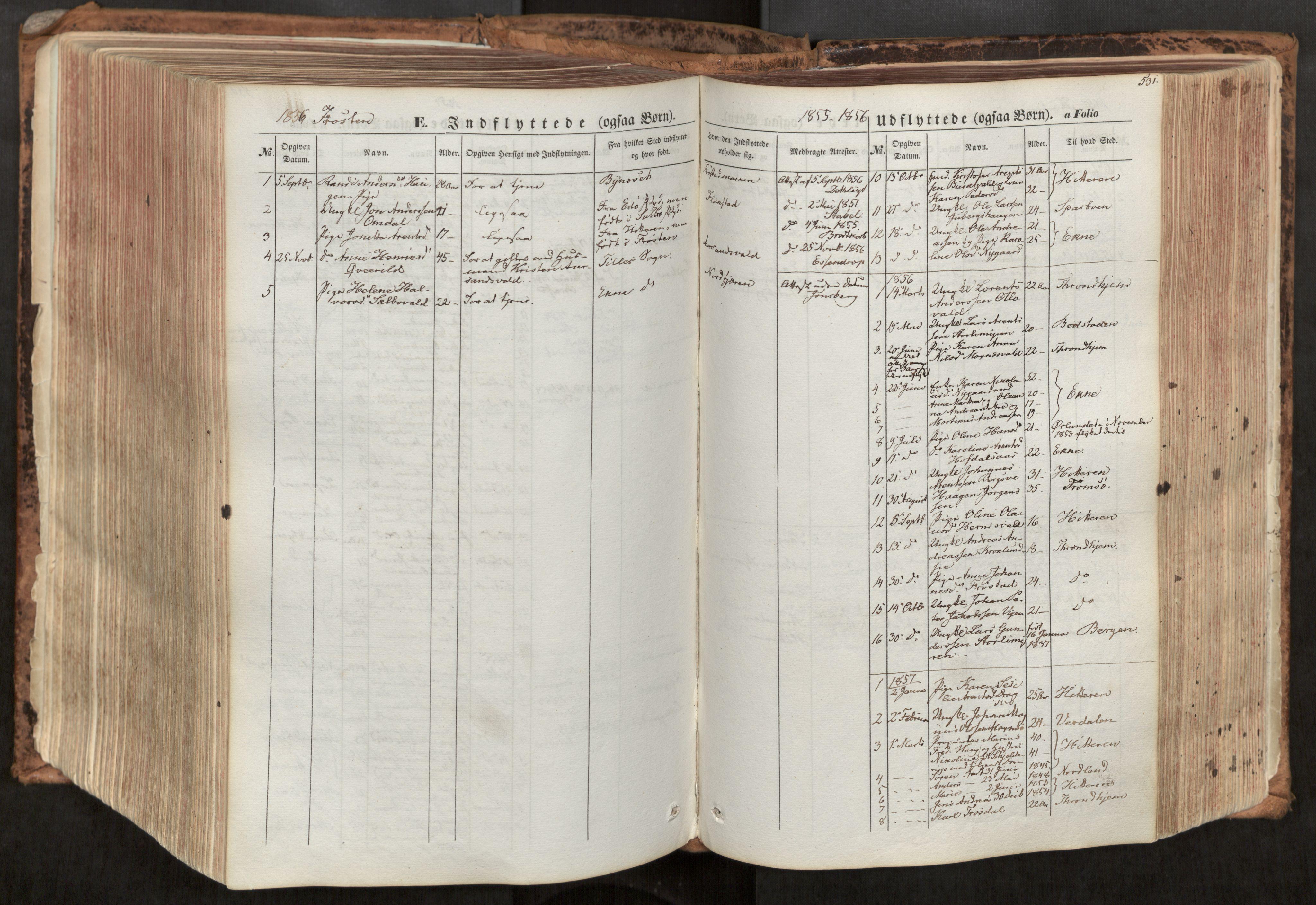 SAT, Ministerialprotokoller, klokkerbøker og fødselsregistre - Nord-Trøndelag, 713/L0116: Ministerialbok nr. 713A07, 1850-1877, s. 531