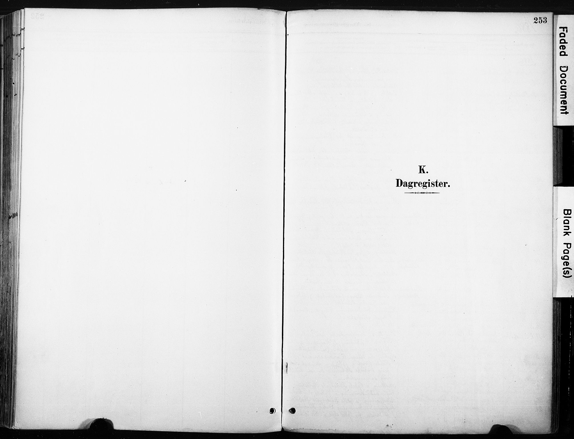 SAKO, Nore kirkebøker, F/Fb/L0002: Ministerialbok nr. II 2, 1886-1906, s. 253