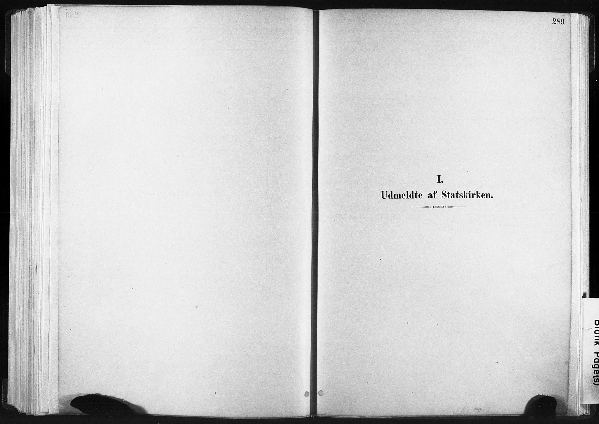 SAT, Ministerialprotokoller, klokkerbøker og fødselsregistre - Sør-Trøndelag, 665/L0773: Ministerialbok nr. 665A08, 1879-1905, s. 289