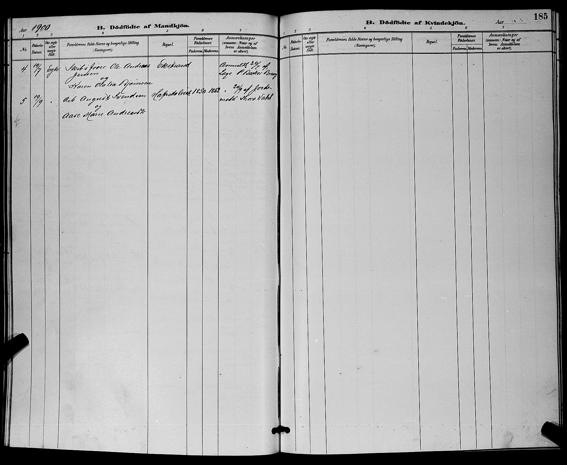 SAKO, Bamble kirkebøker, G/Ga/L0009: Klokkerbok nr. I 9, 1888-1900, s. 185