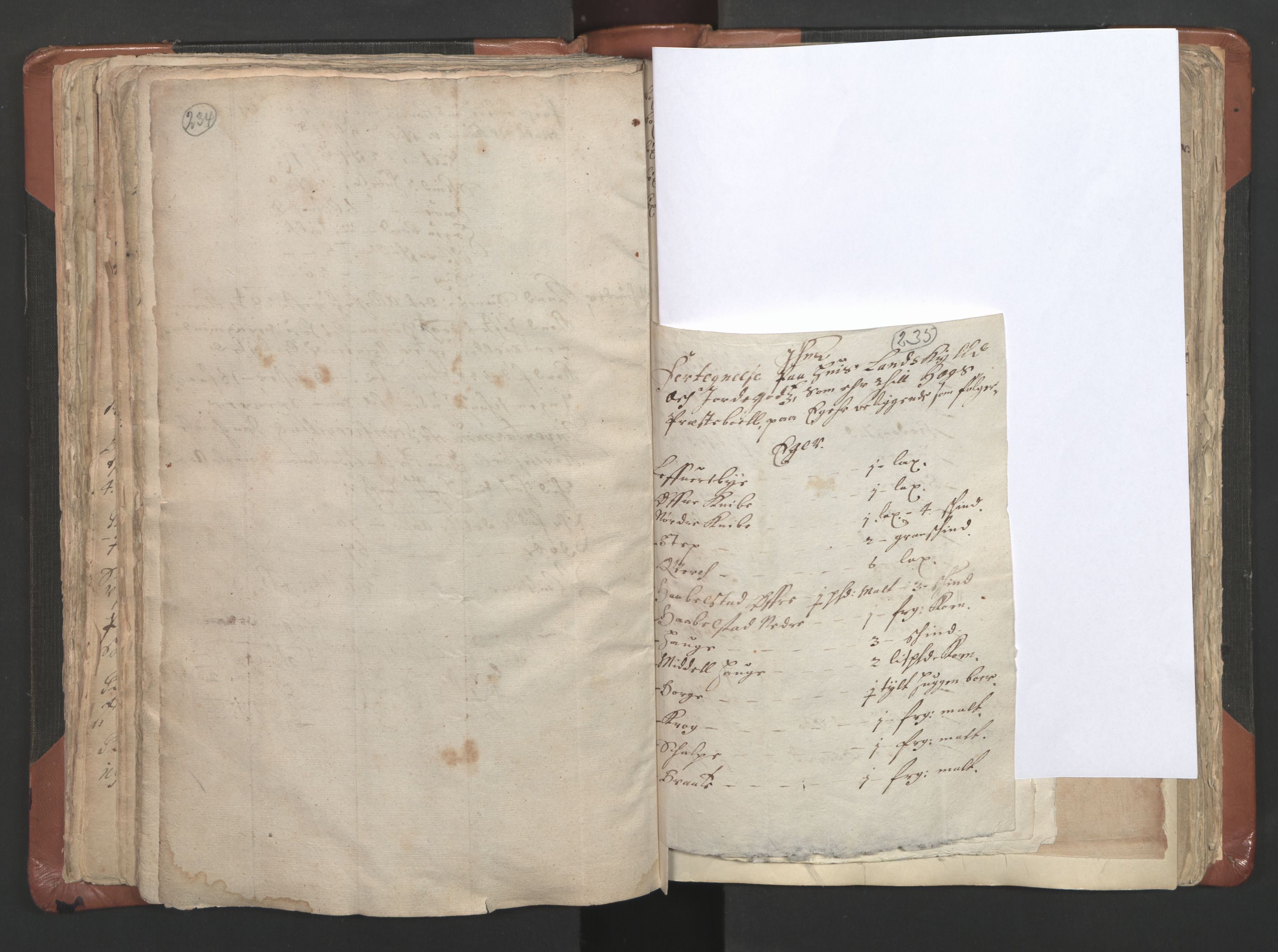 RA, Sogneprestenes manntall 1664-1666, nr. 9: Bragernes prosti, 1664-1666, s. 234-235