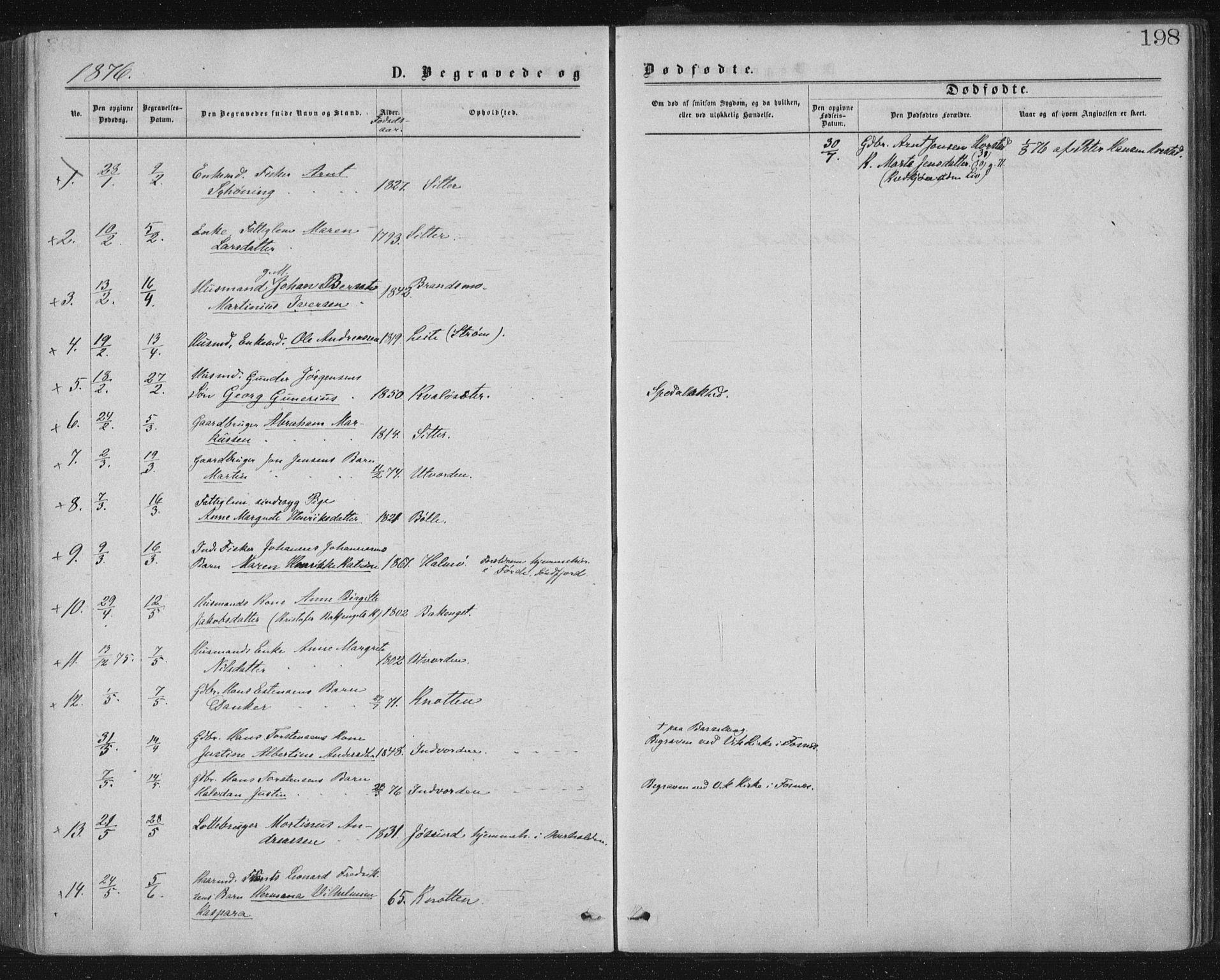 SAT, Ministerialprotokoller, klokkerbøker og fødselsregistre - Nord-Trøndelag, 771/L0596: Ministerialbok nr. 771A03, 1870-1884, s. 198