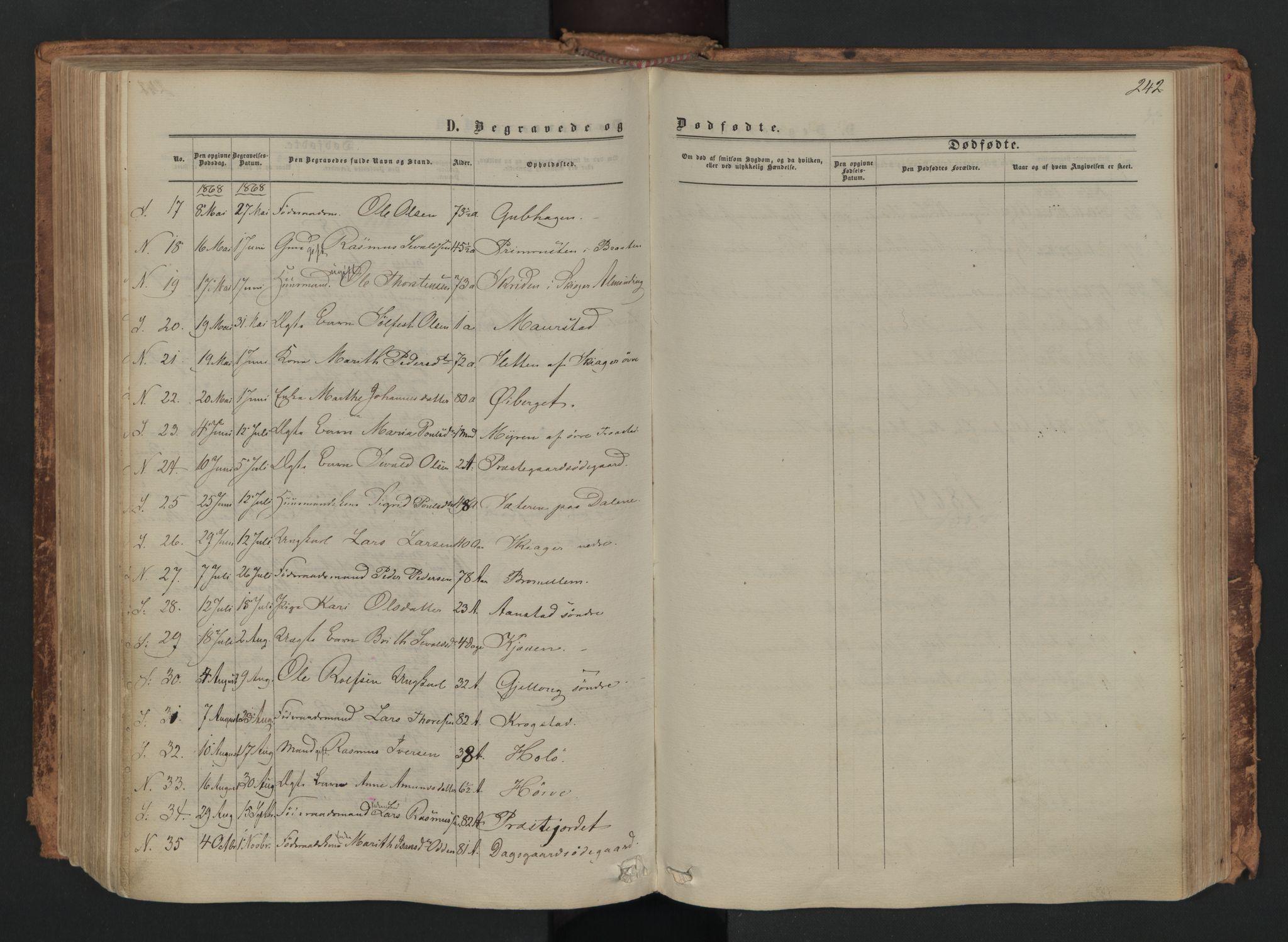 SAH, Skjåk prestekontor, Ministerialbok nr. 1, 1863-1879, s. 242