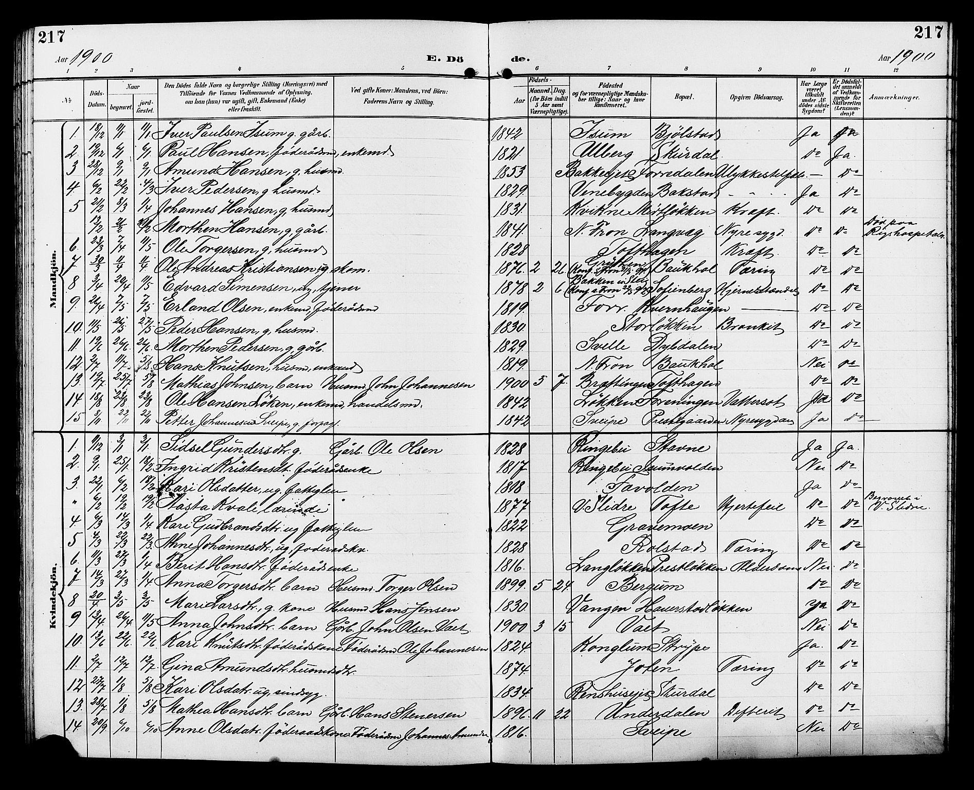 SAH, Sør-Fron prestekontor, H/Ha/Hab/L0004: Klokkerbok nr. 4, 1896-1911, s. 217